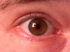 eye pupil lashes closeup iris