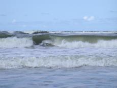 wave waves sea shore seashore rolling spray water cold beach salty