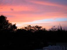 jacco curacao sky sunset dusk silhouette purple pink trees clouds
