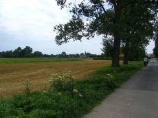 janny countryside fields bicyclist town village fields