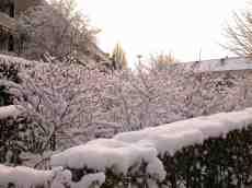 eva frost snow winter wonderland blanket covered white
