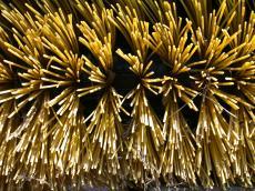 plastic brush hairs yellow fibers