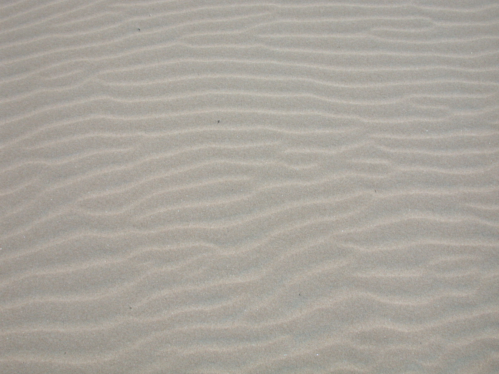 Image*After : photos :... Underwater Sand Texture
