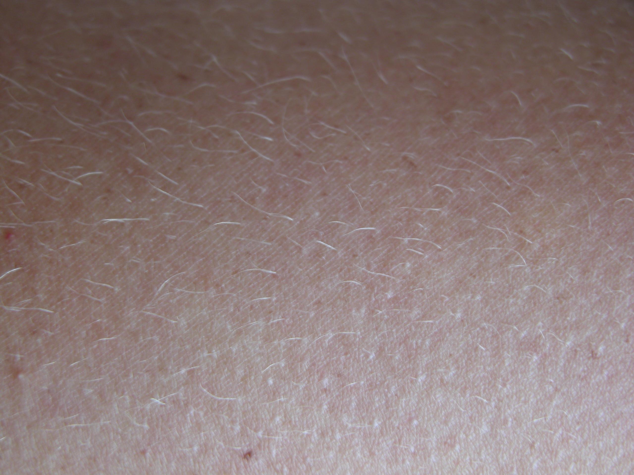 50 Must-Have Skin Textures   Top Design Magazine - Web ...