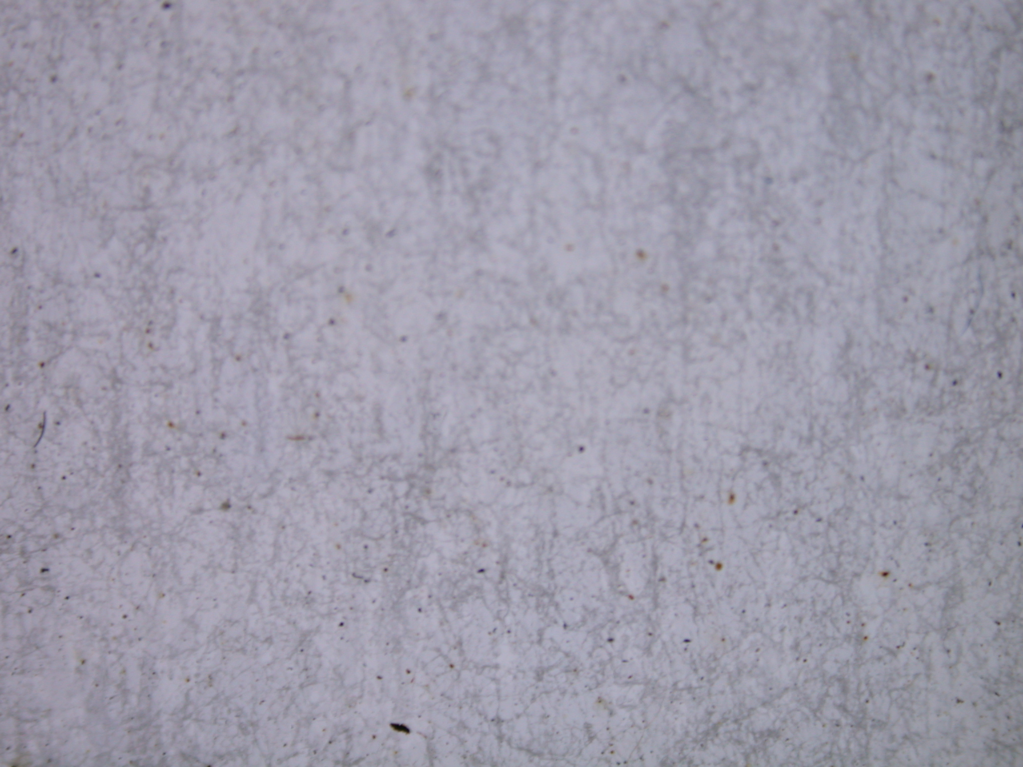 Image after photos wall flat smooth concrete grey marble for Smooth concrete texture