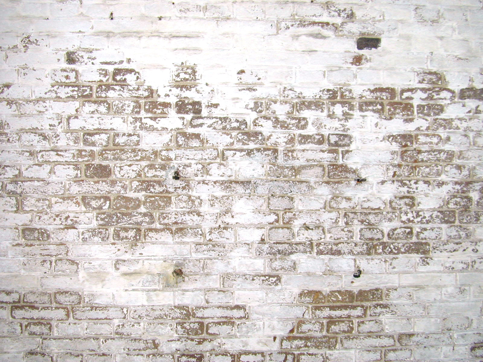 Image after textures white plastered wall bricks dirty for White exposed brick wall