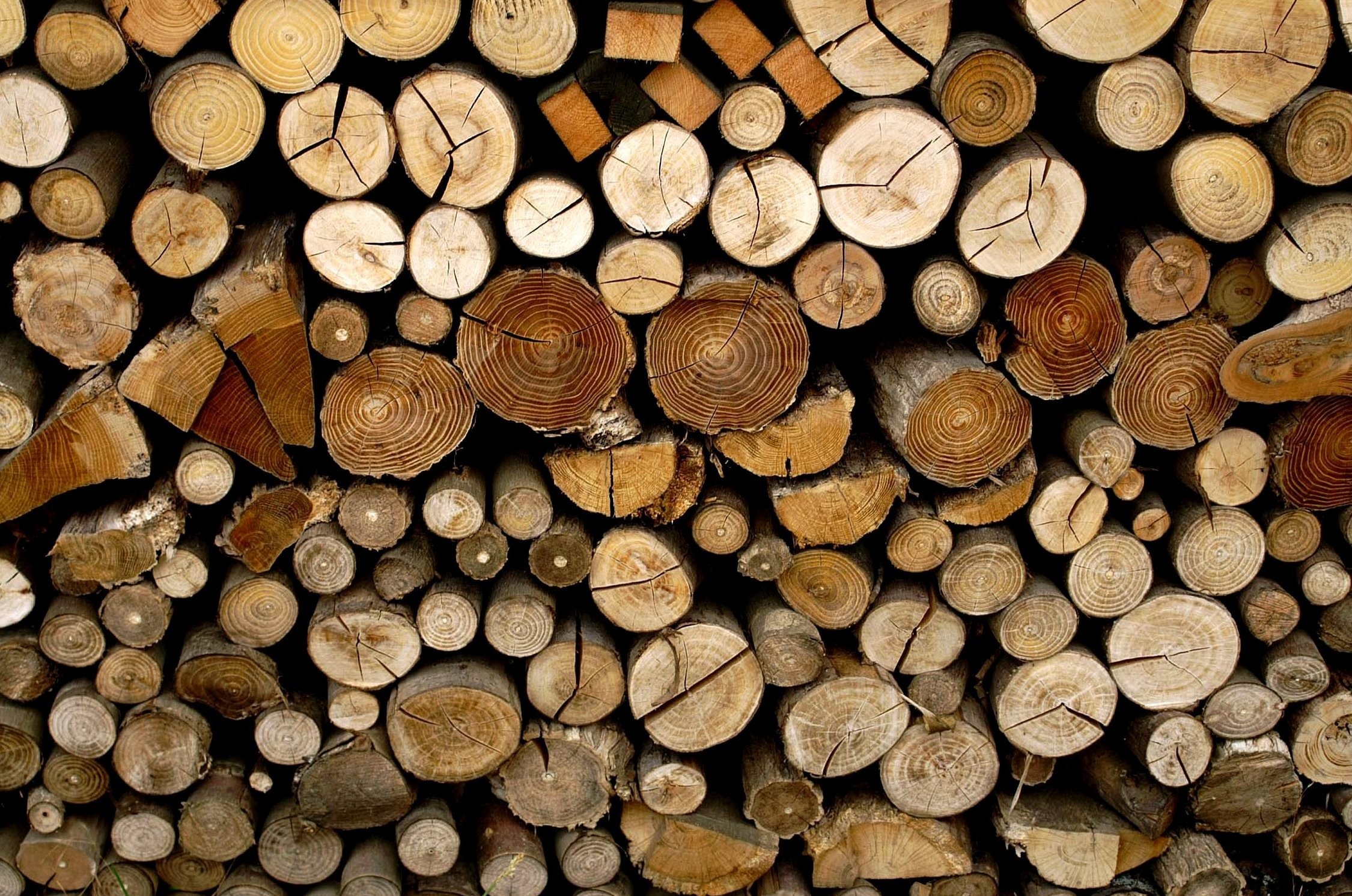 Image Gallery wood logs
