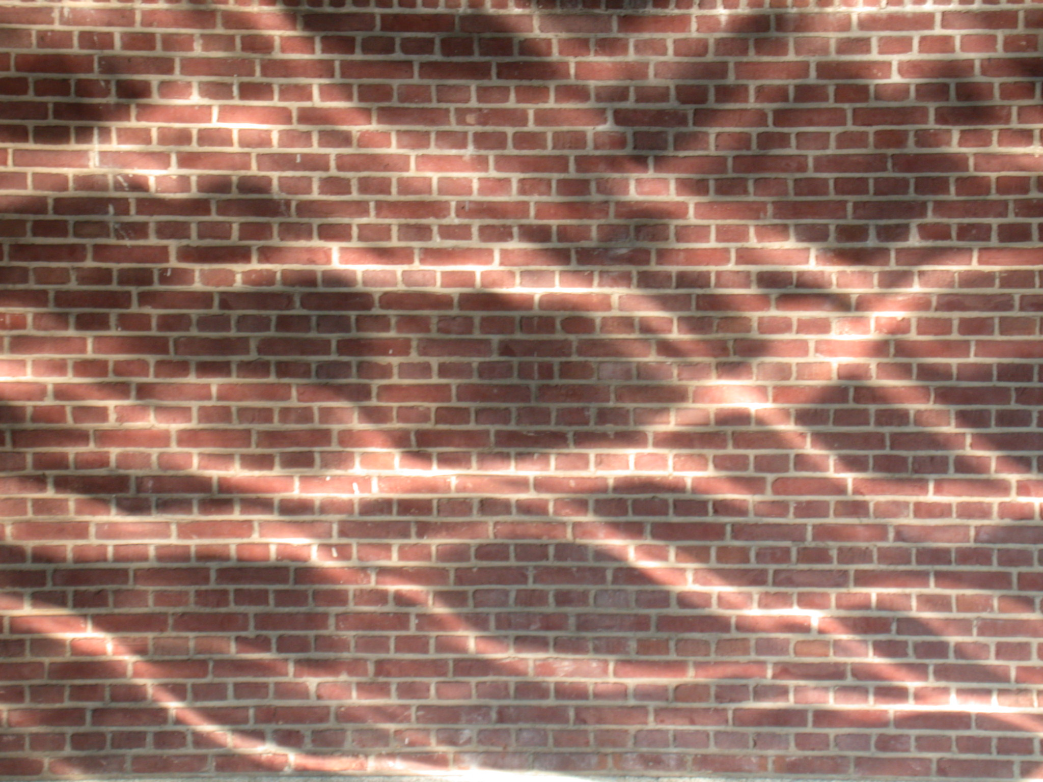 brick wall bricks red wave waves water reflect reflection reflecting lines