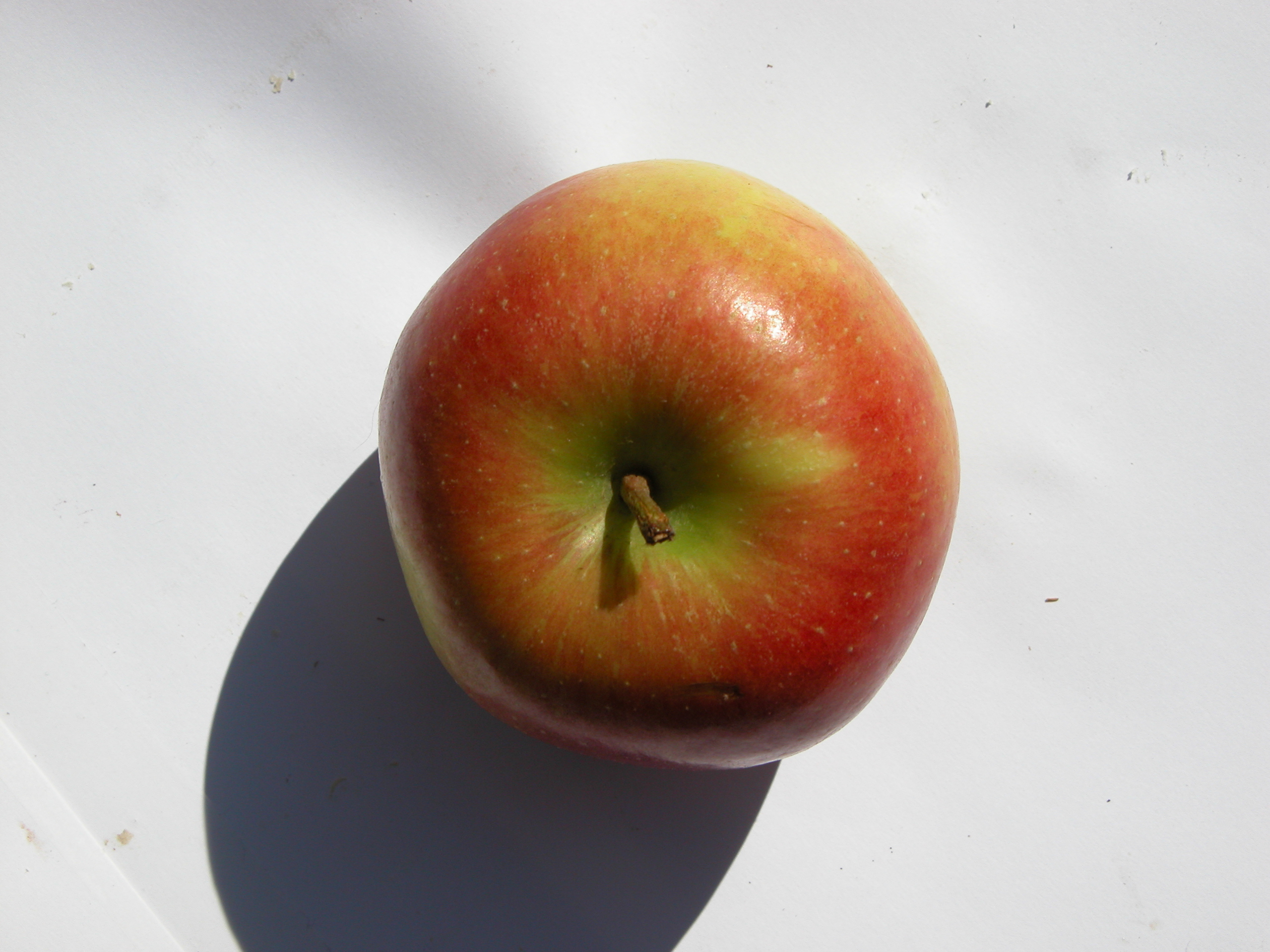 nature food fruit fruits circle sphere apple top red
