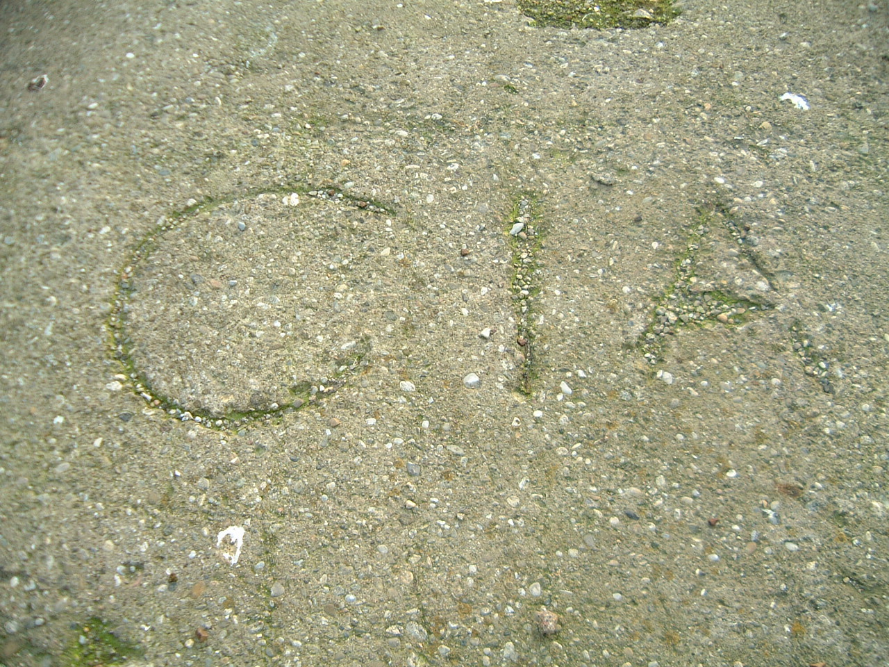 maartent scripts textures concrete grounds cia writing