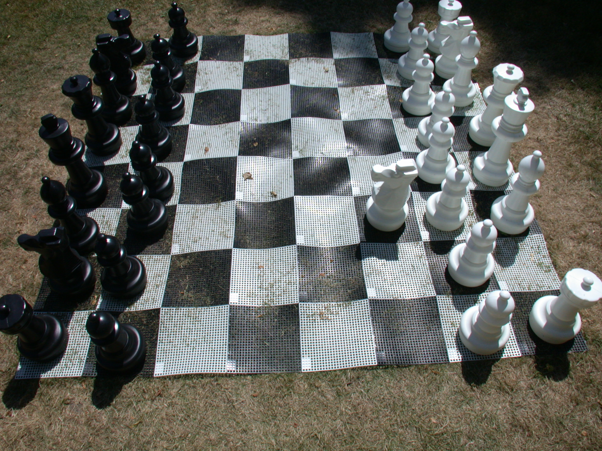objects games chess game gameset set plastic king queen checkmate texture