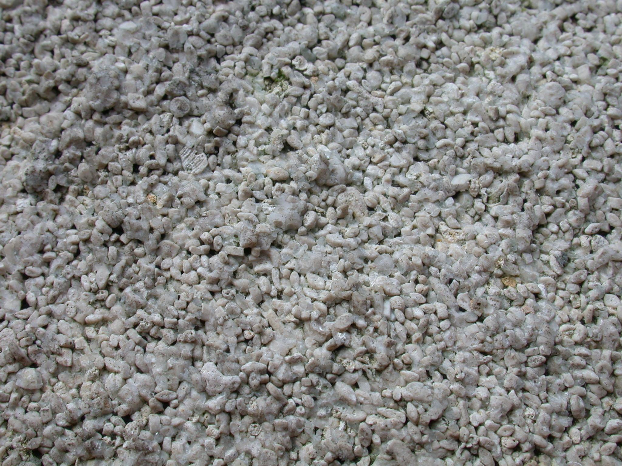 closeup of a carpet little fluff white stuff
