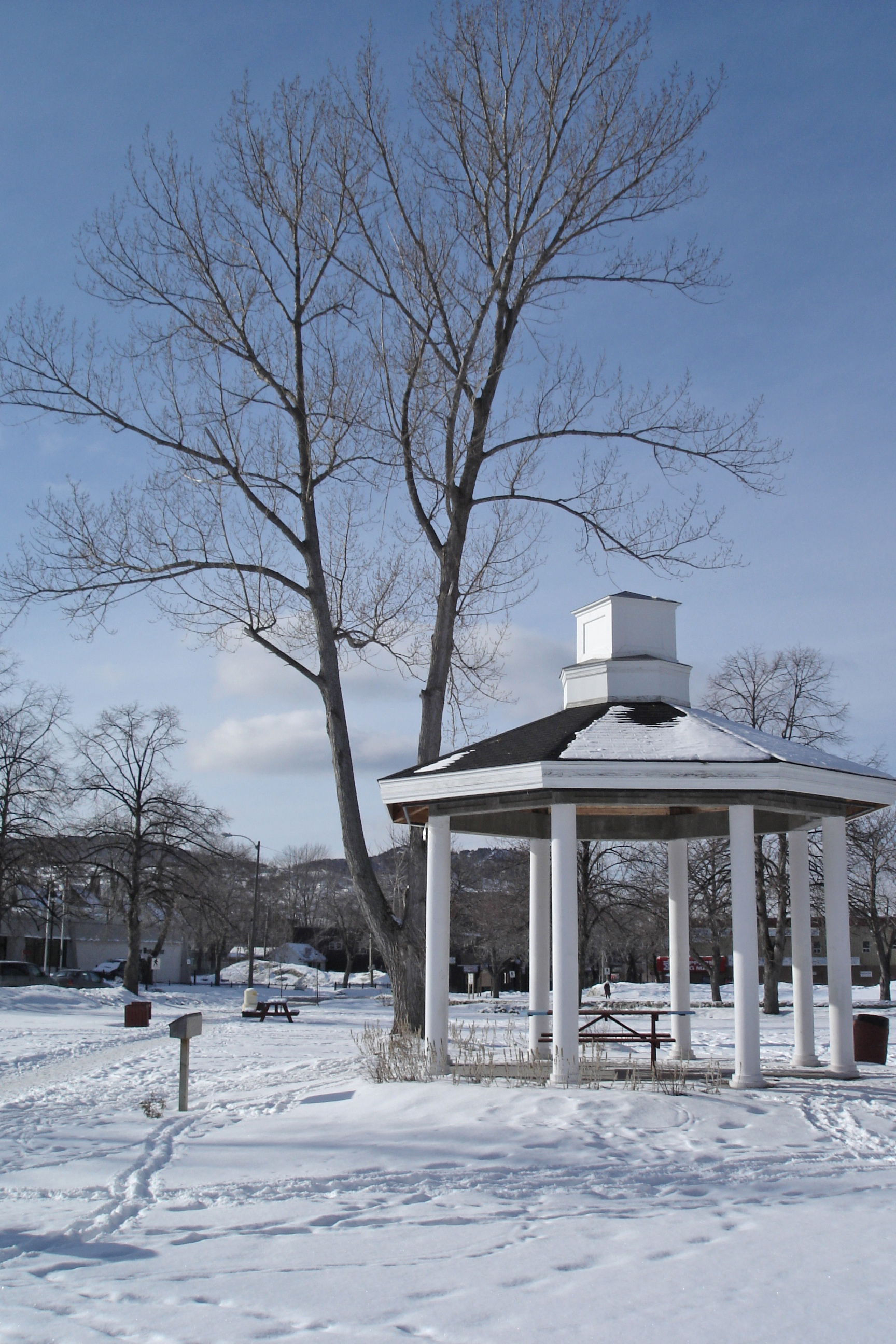 brandon pagoda gazebo winter park snow cold