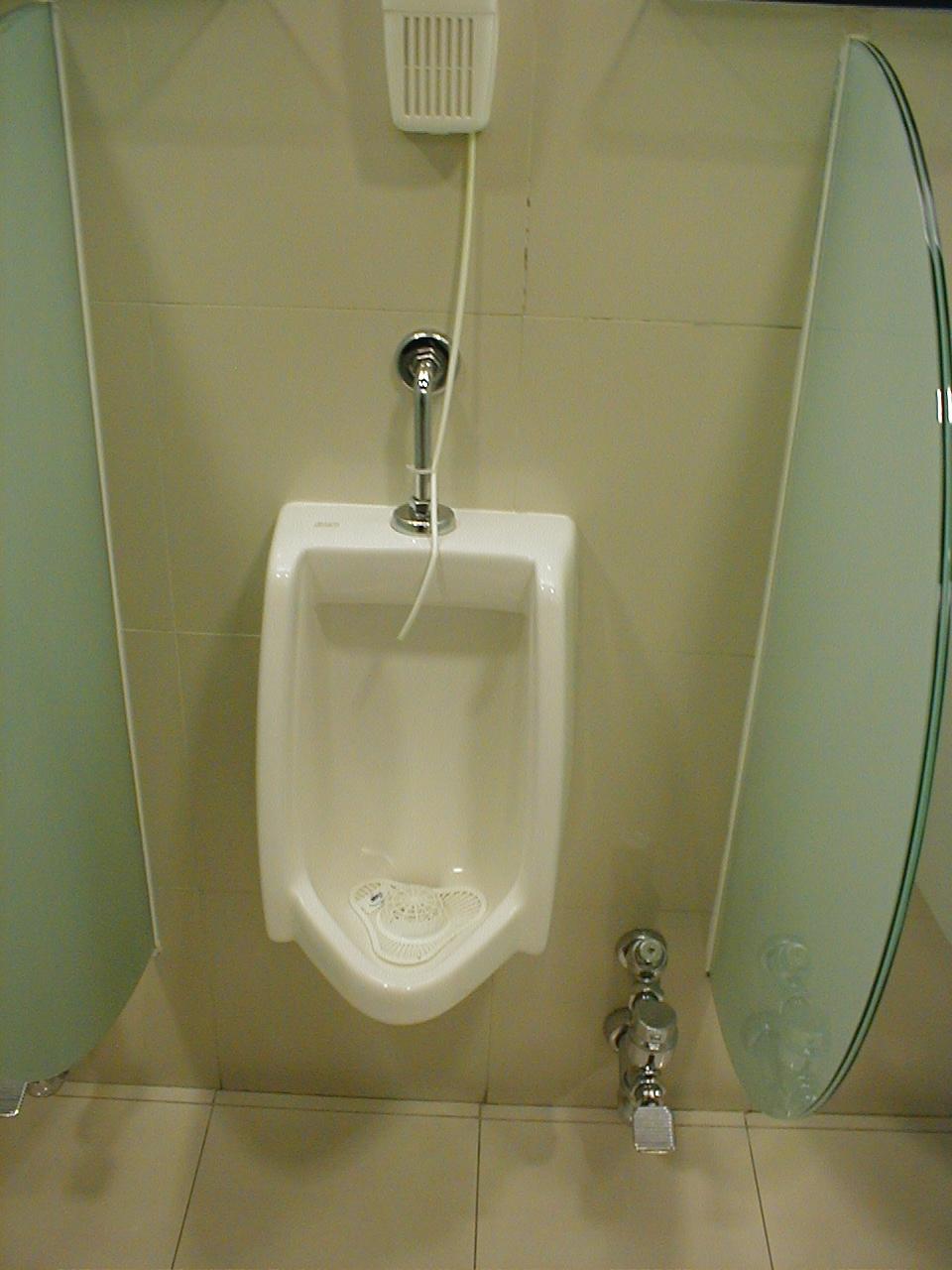dario toilet urinal