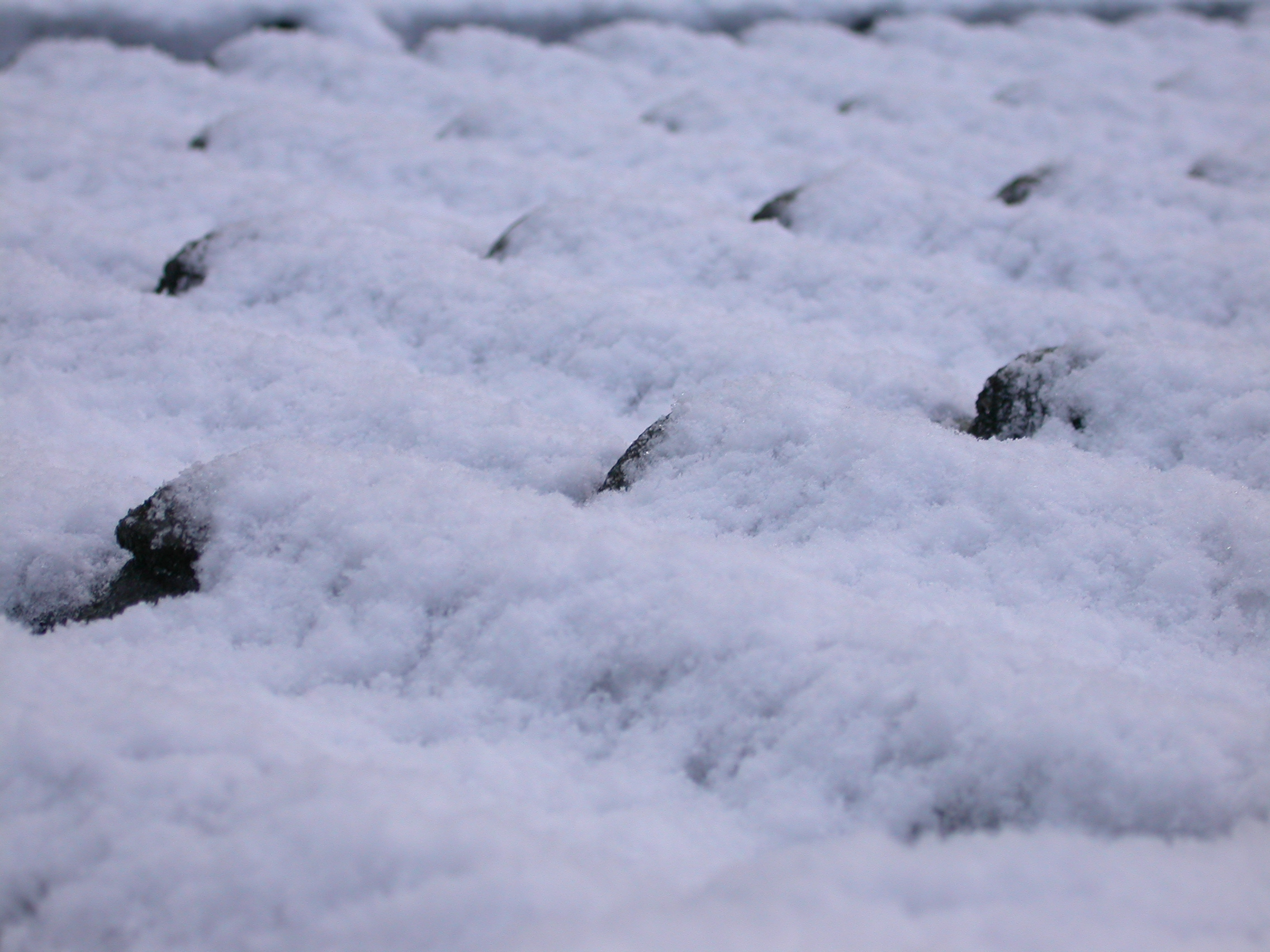 snow roof tile eva cold winter royalty