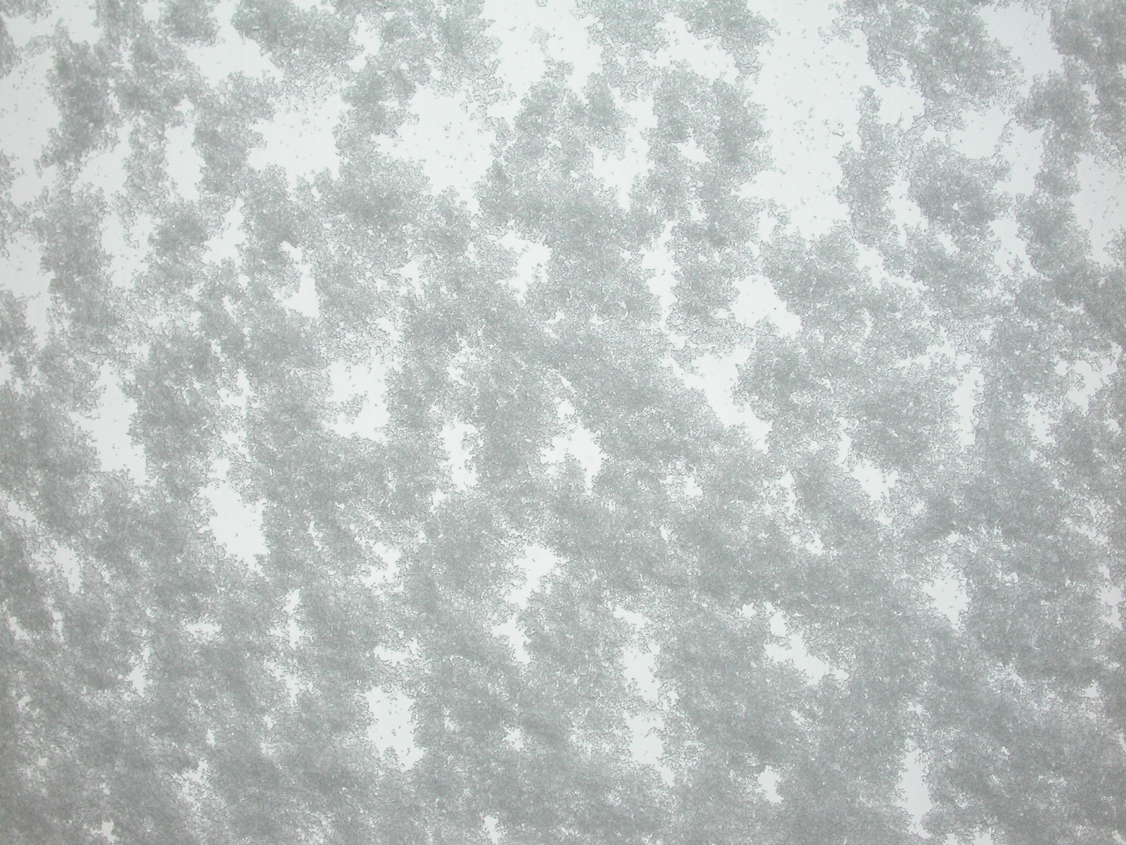 eva snow thick blanket white cold frost deep car window