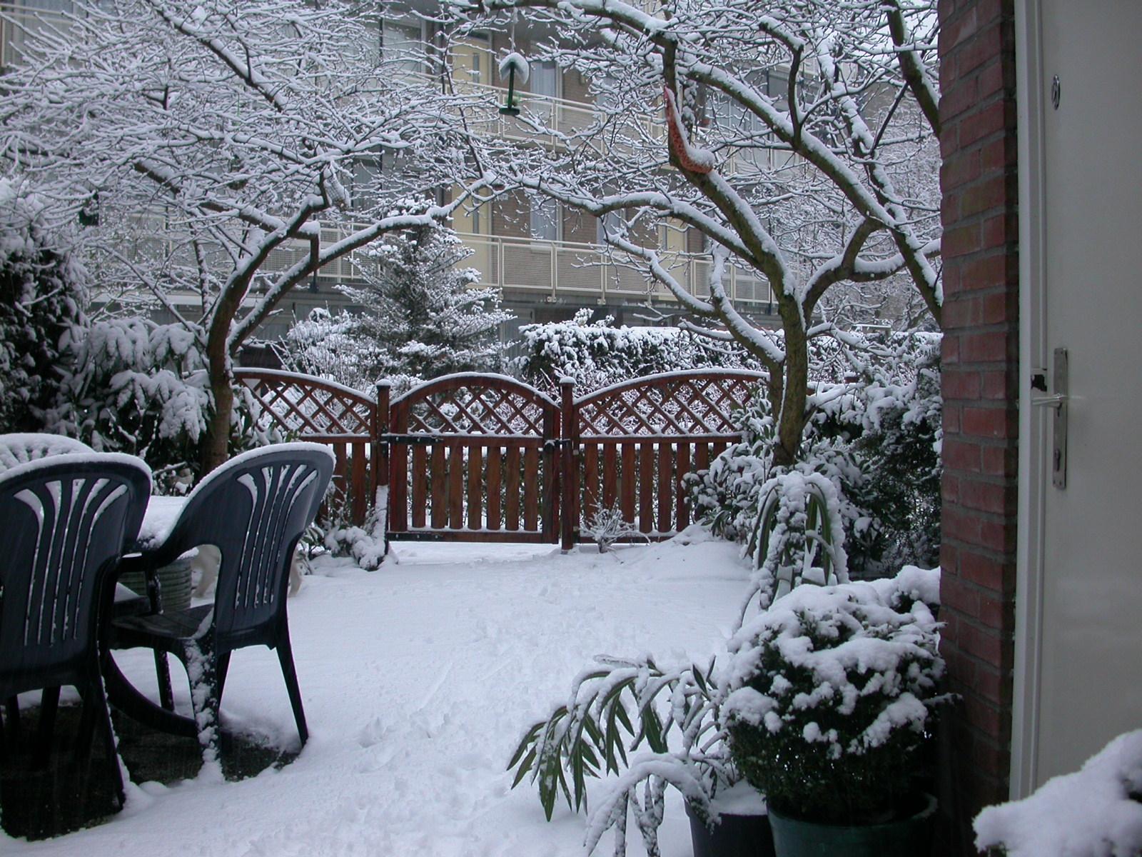 eva garden winter snow blanket white crisp cold backgarden images