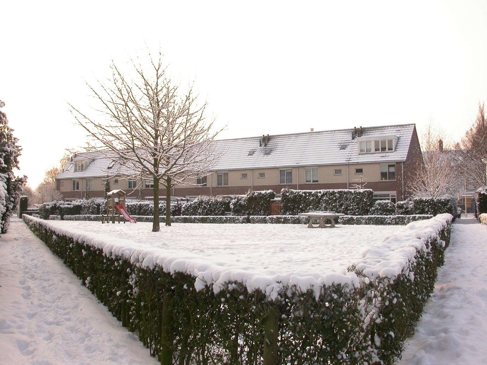 eva park houses snow winter blanket cold white slide bushes free