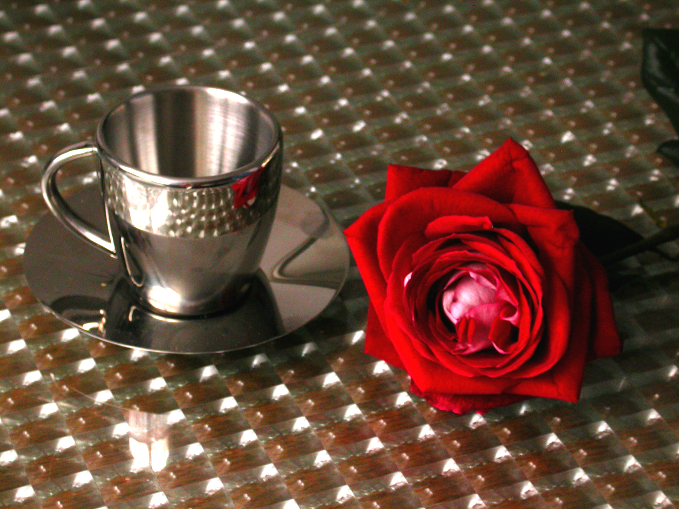 eva chrome coffee cup and a rose on a table