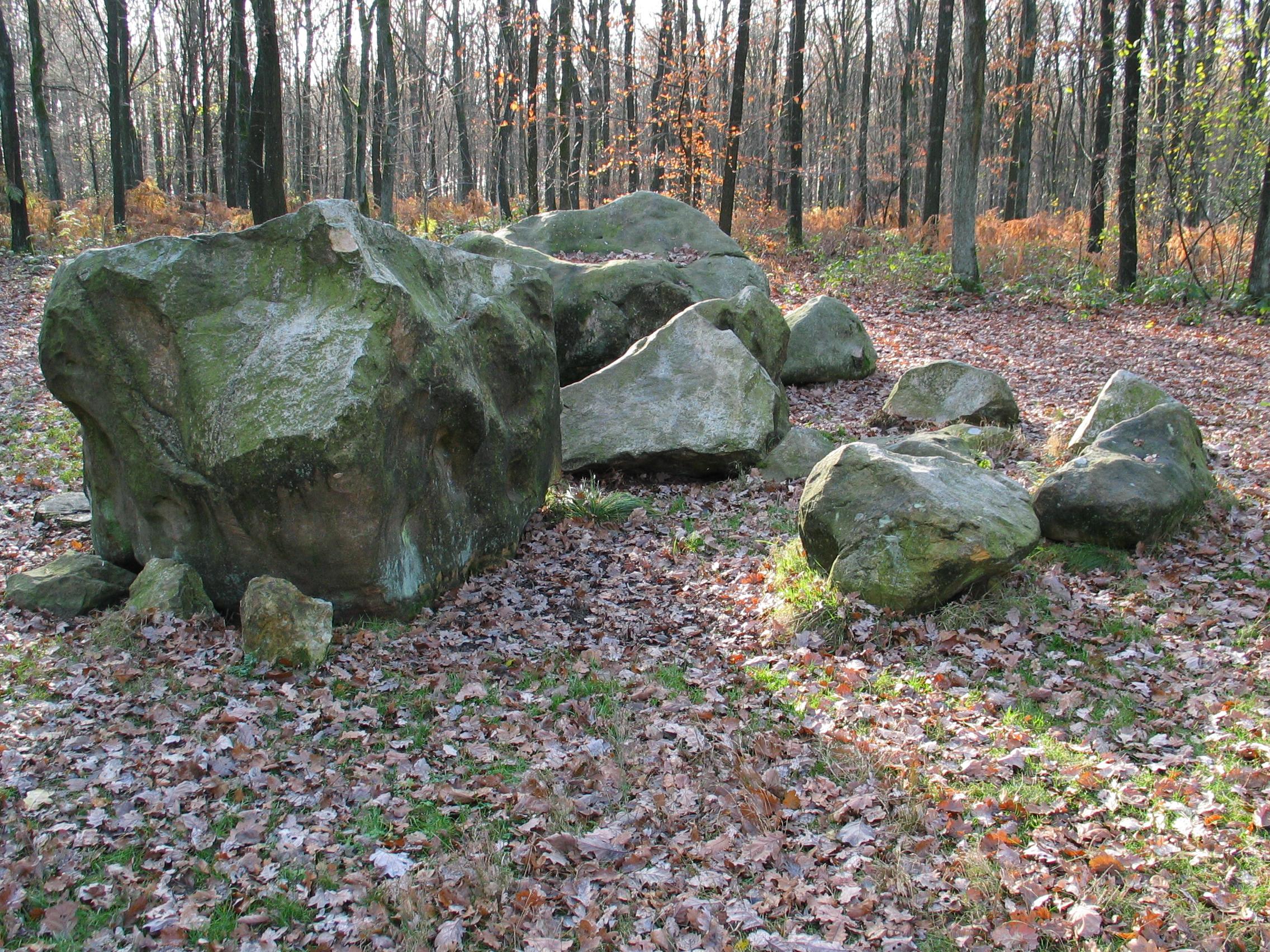 Whispered Tonsil Stones Removal Secrets | สำนักงานเศรษฐกิจ