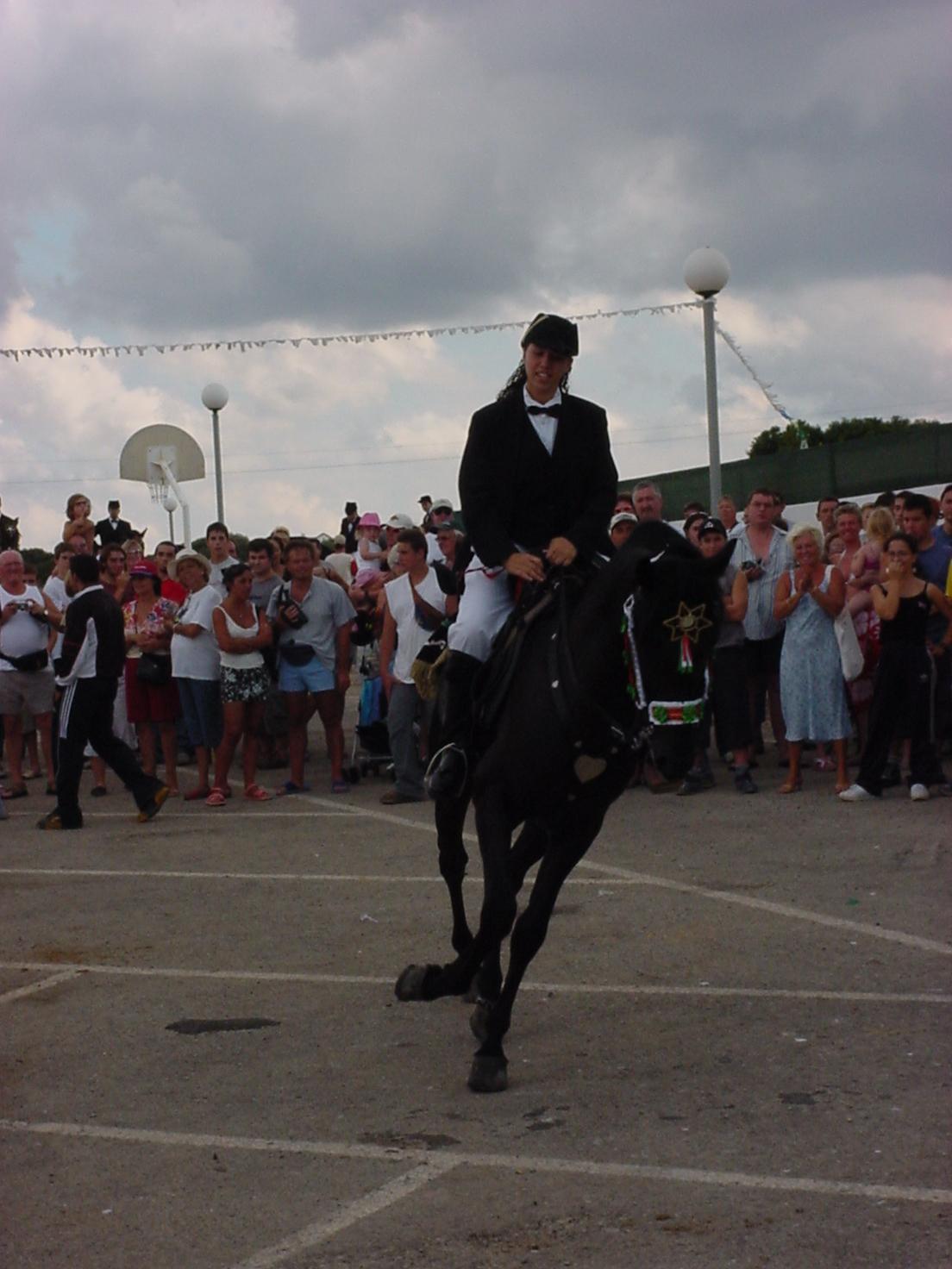 insektokutor spain rider horse black parade amazon
