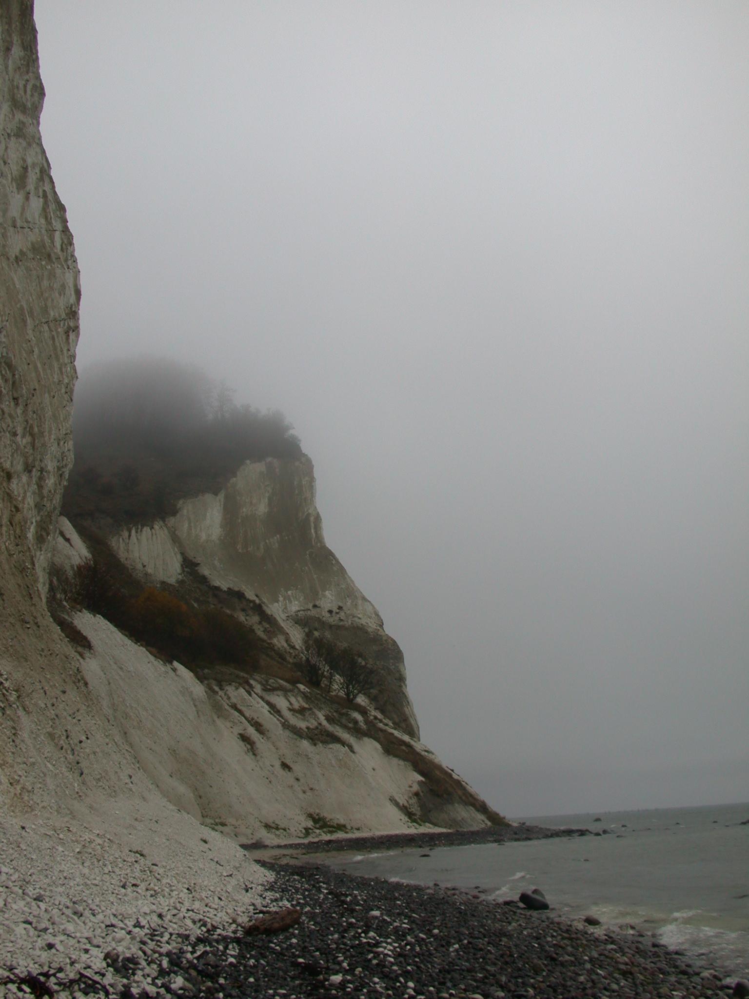 led fog light review