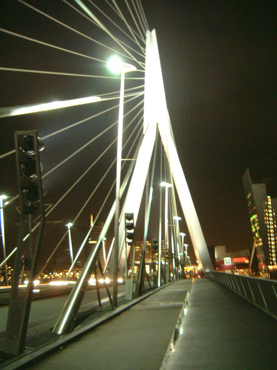 maartent erasmus bridge rotterdam the netherlands by night kabels
