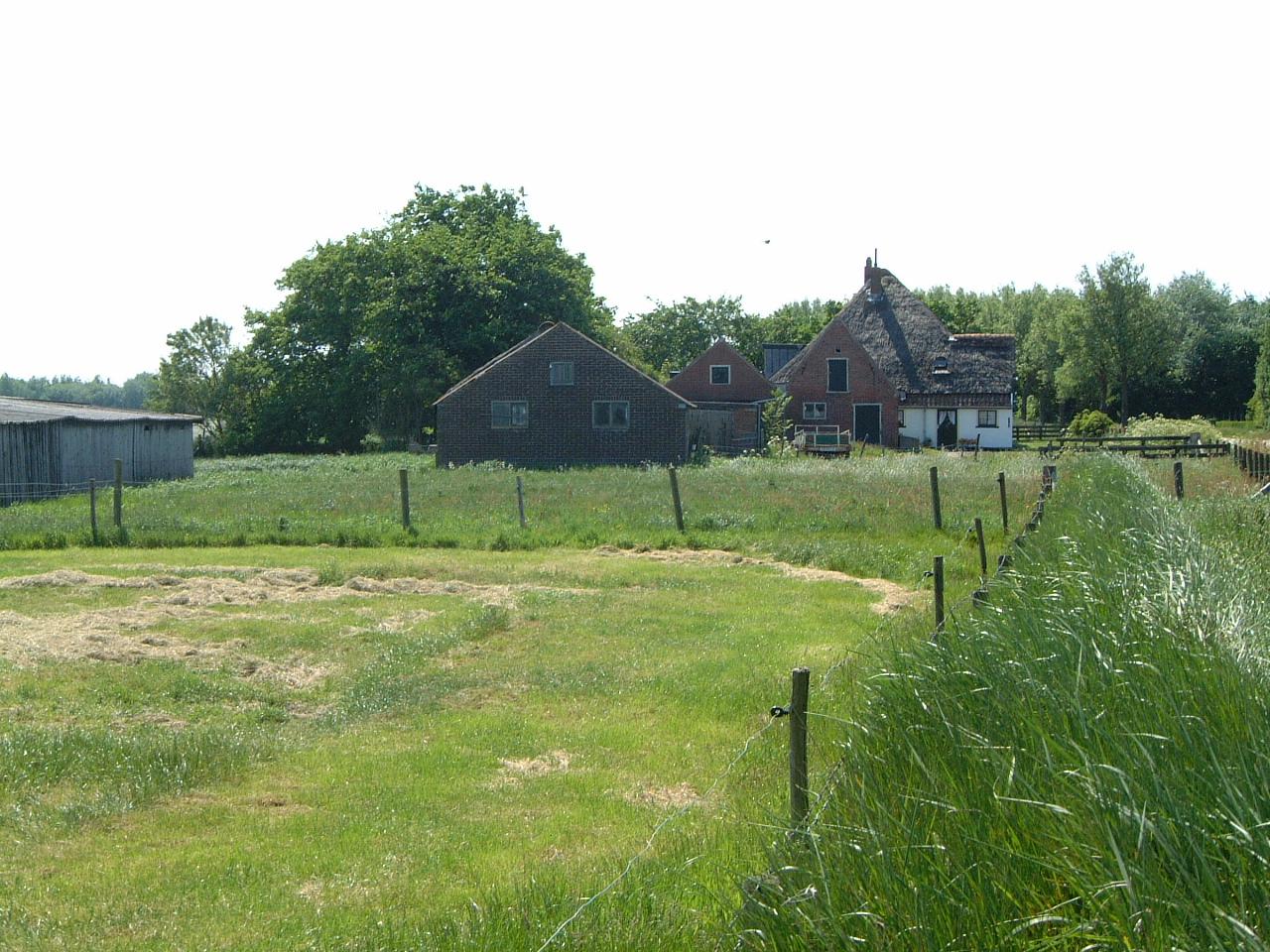 maartent field grass green fence farm house farmhouse grass mown
