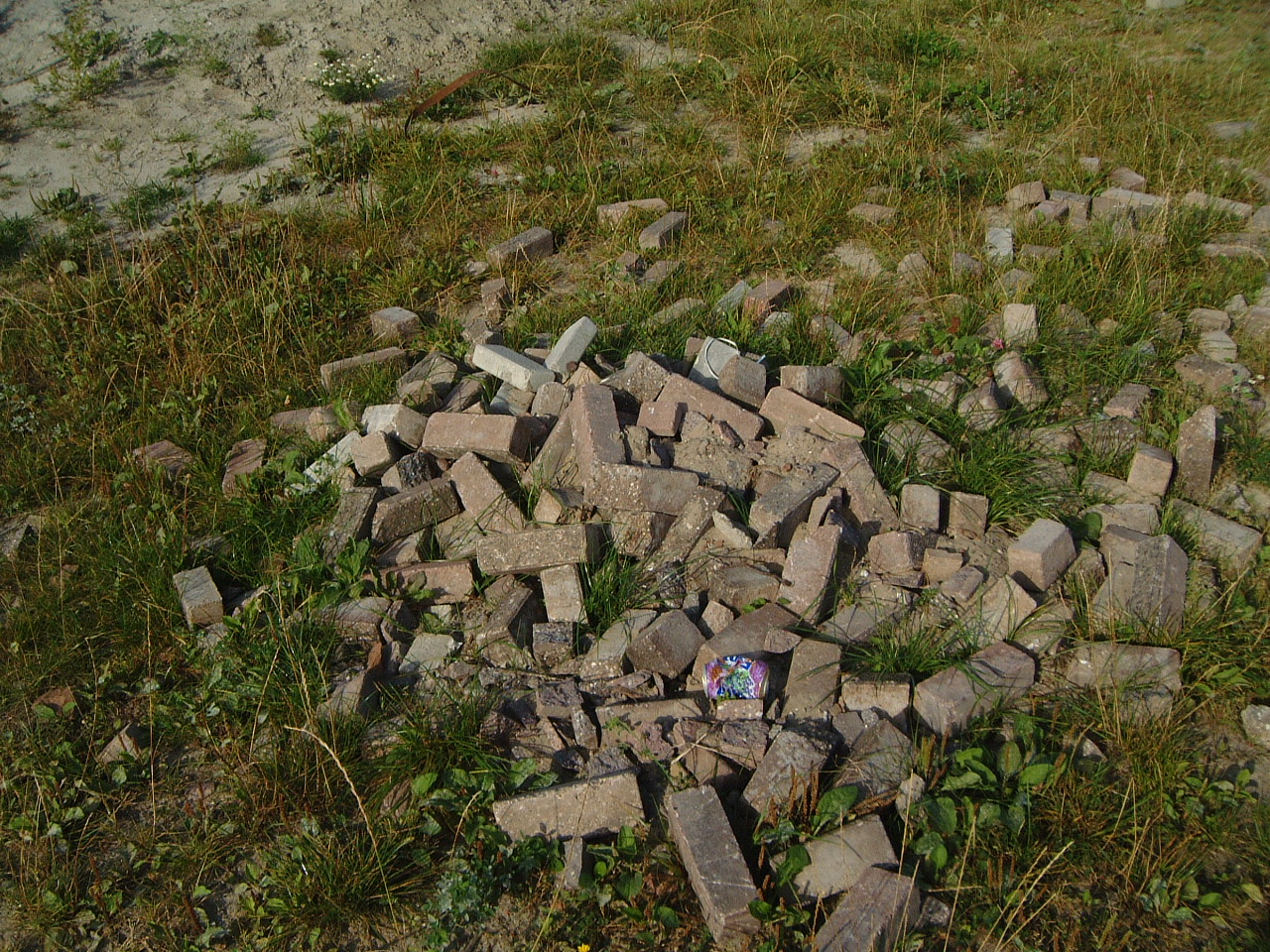 maartent pile of bricks in a field grass soda can littering