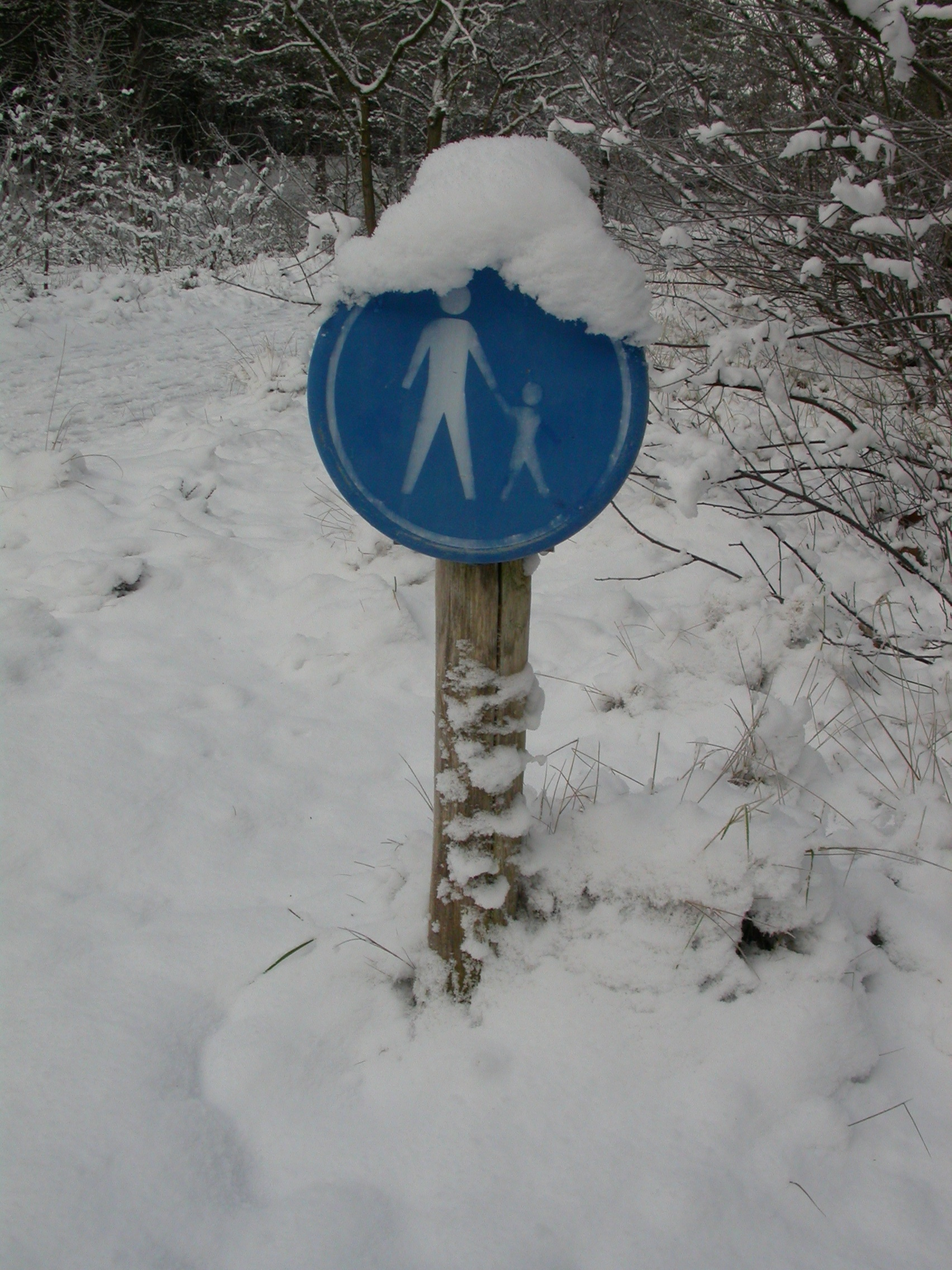 paul sign in the snow cold white frost pedestrians