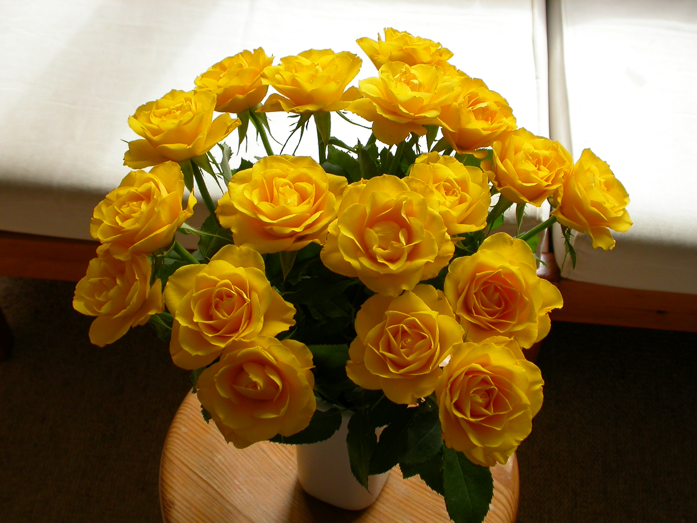 paul flowers rose roses yellow bouquet bunch of flowers