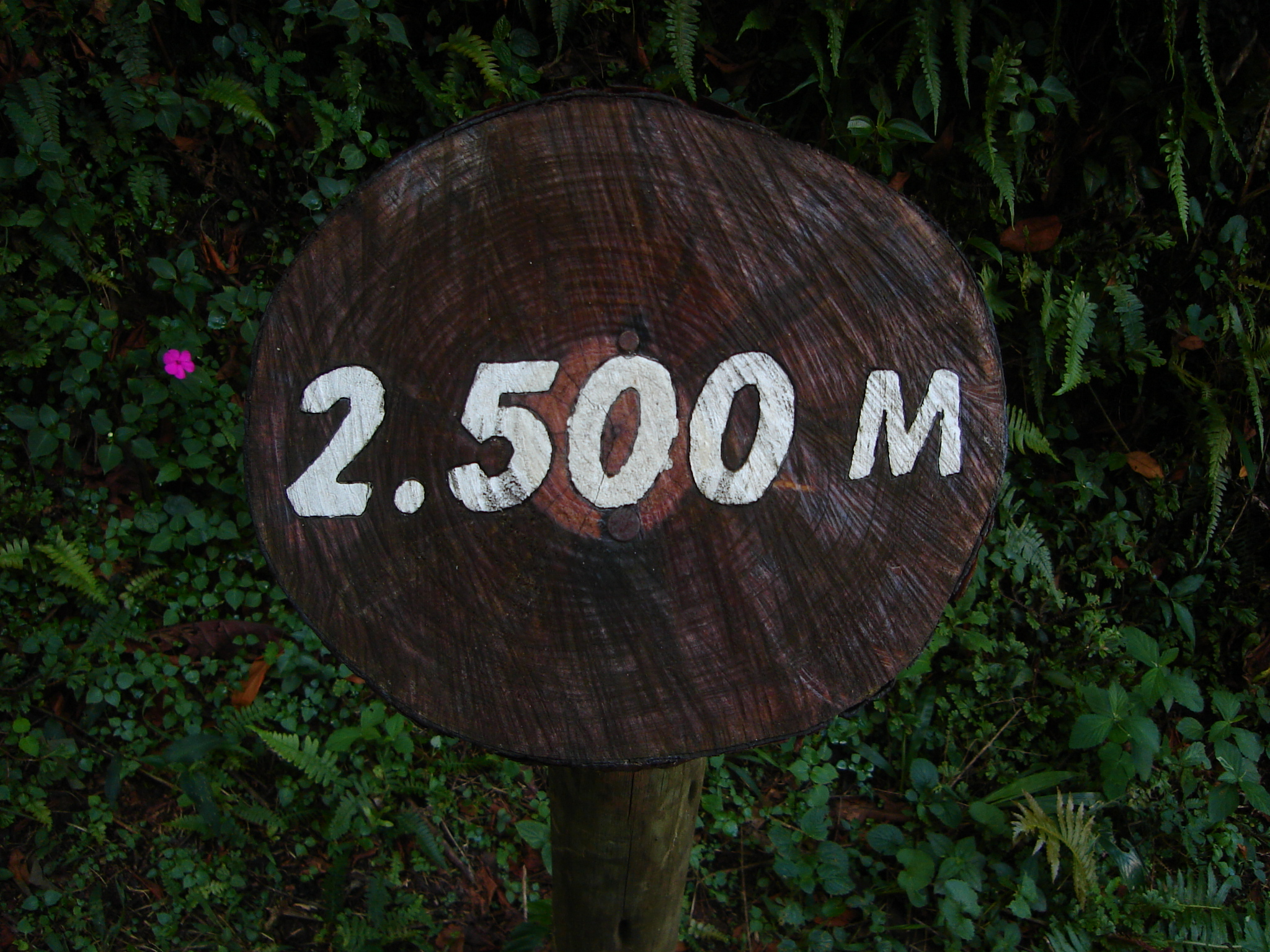 poows sign 2.500 m meters meter white on black letters tree stump