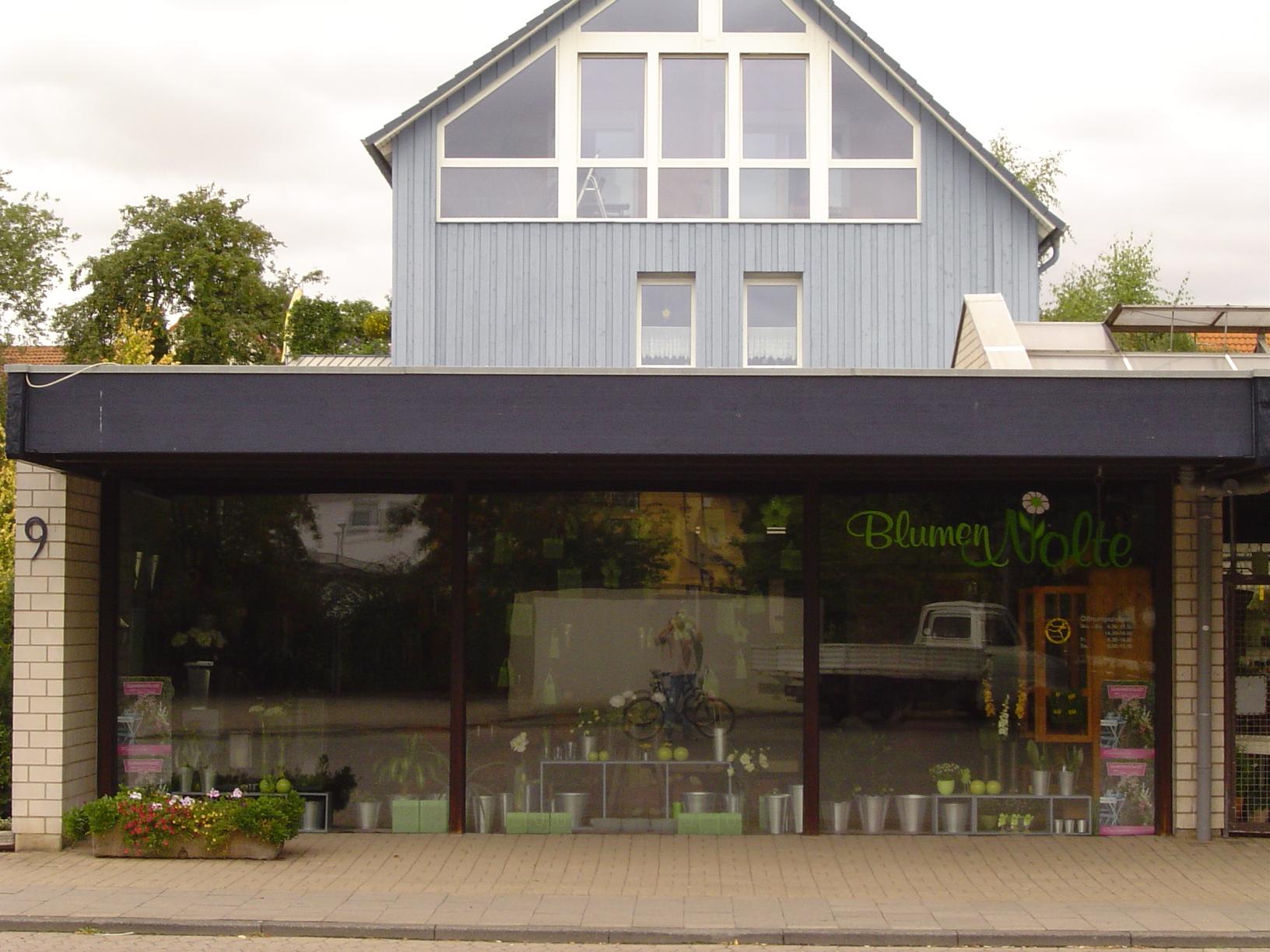 rigoletto flower shop florist windows blumen