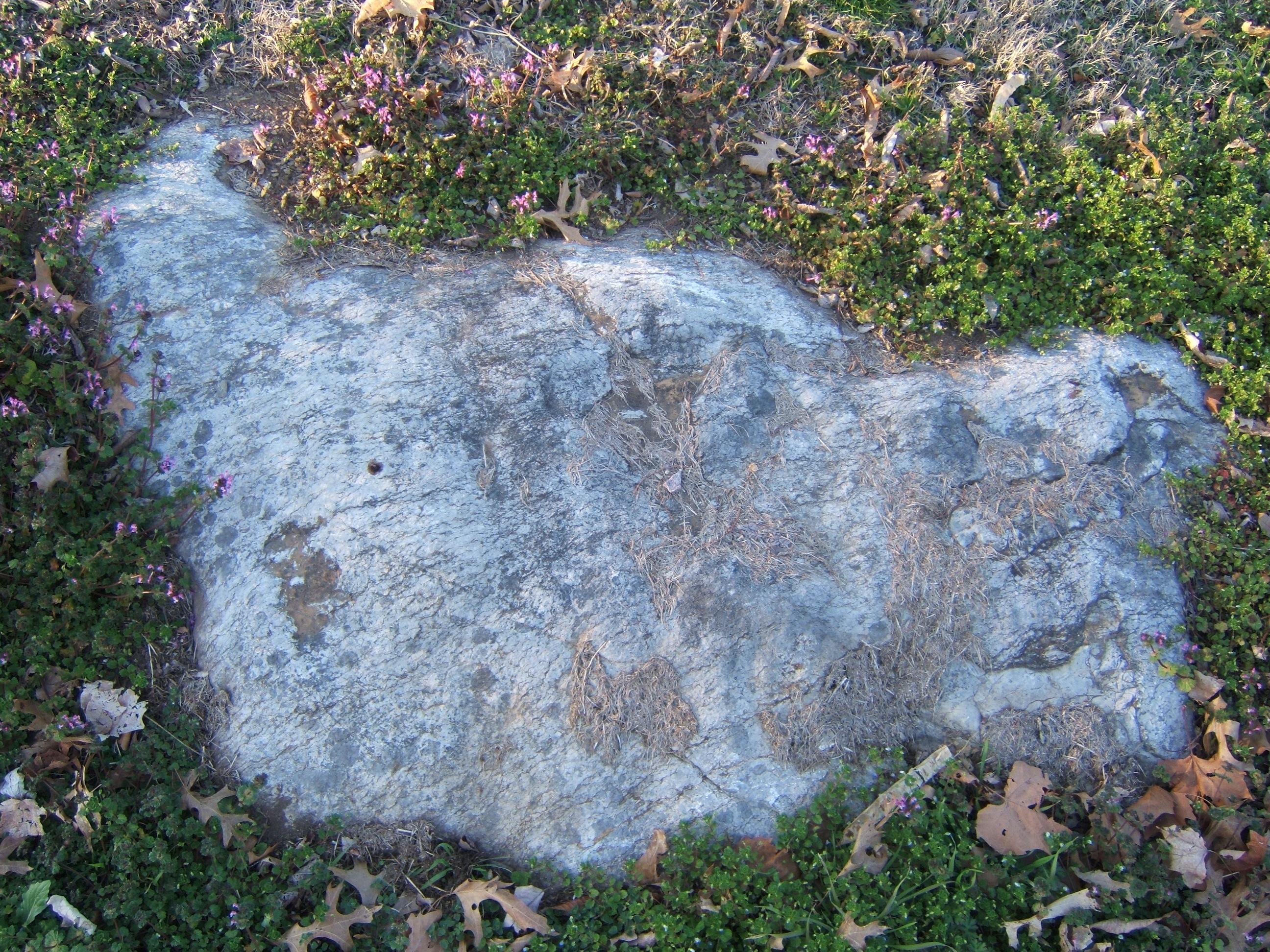 shanenieb rock light white in ground bolder stone
