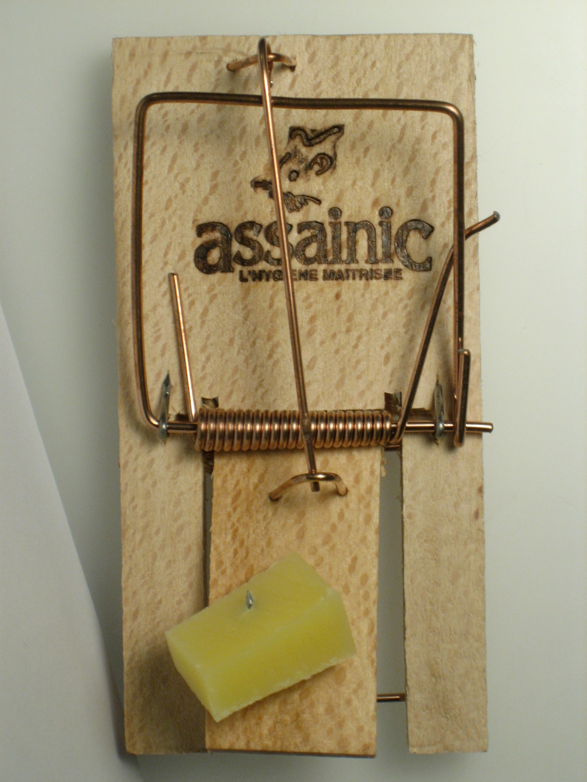 stephanemattern mousetrap cheese mouse trap its a trap!