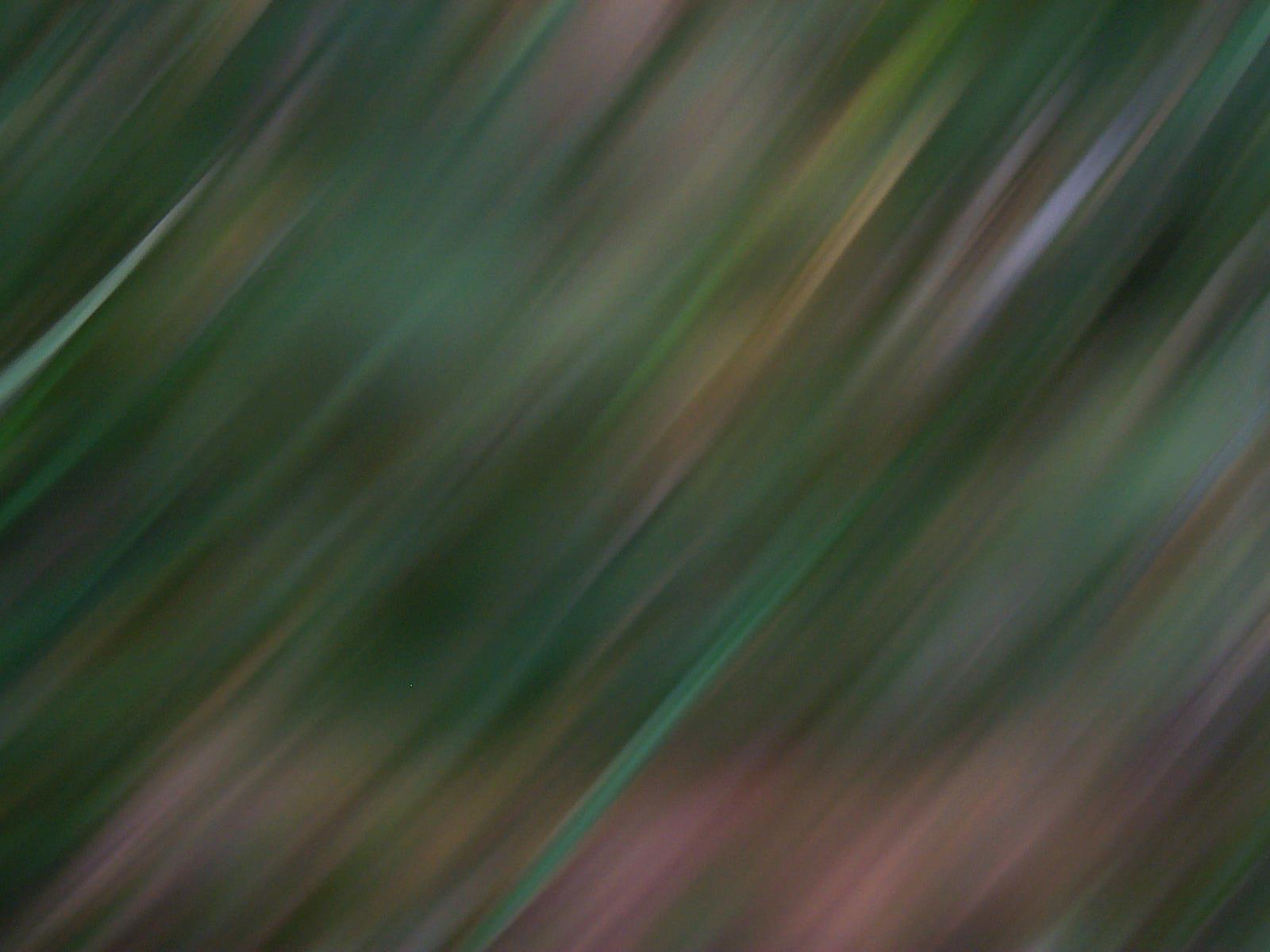 trevor blur swish swoosh blurred blurry green speed fast