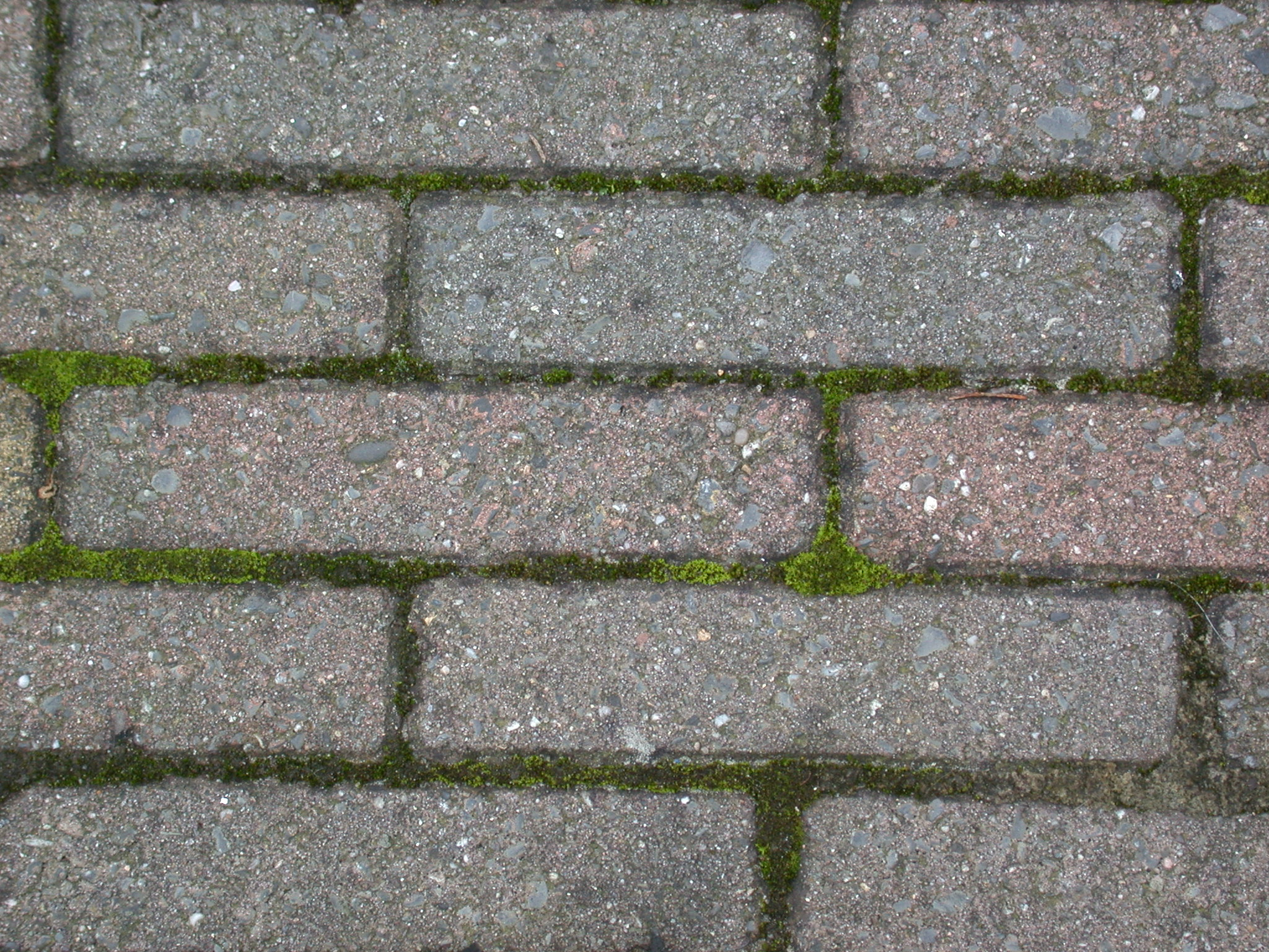 grounds pavement street brick bricks royalty-free