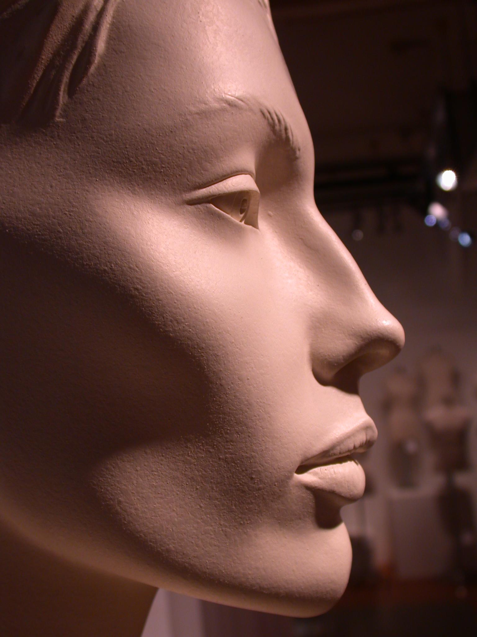 human dummy head mannequin kraftwerk plastic cheeks nose lips pink