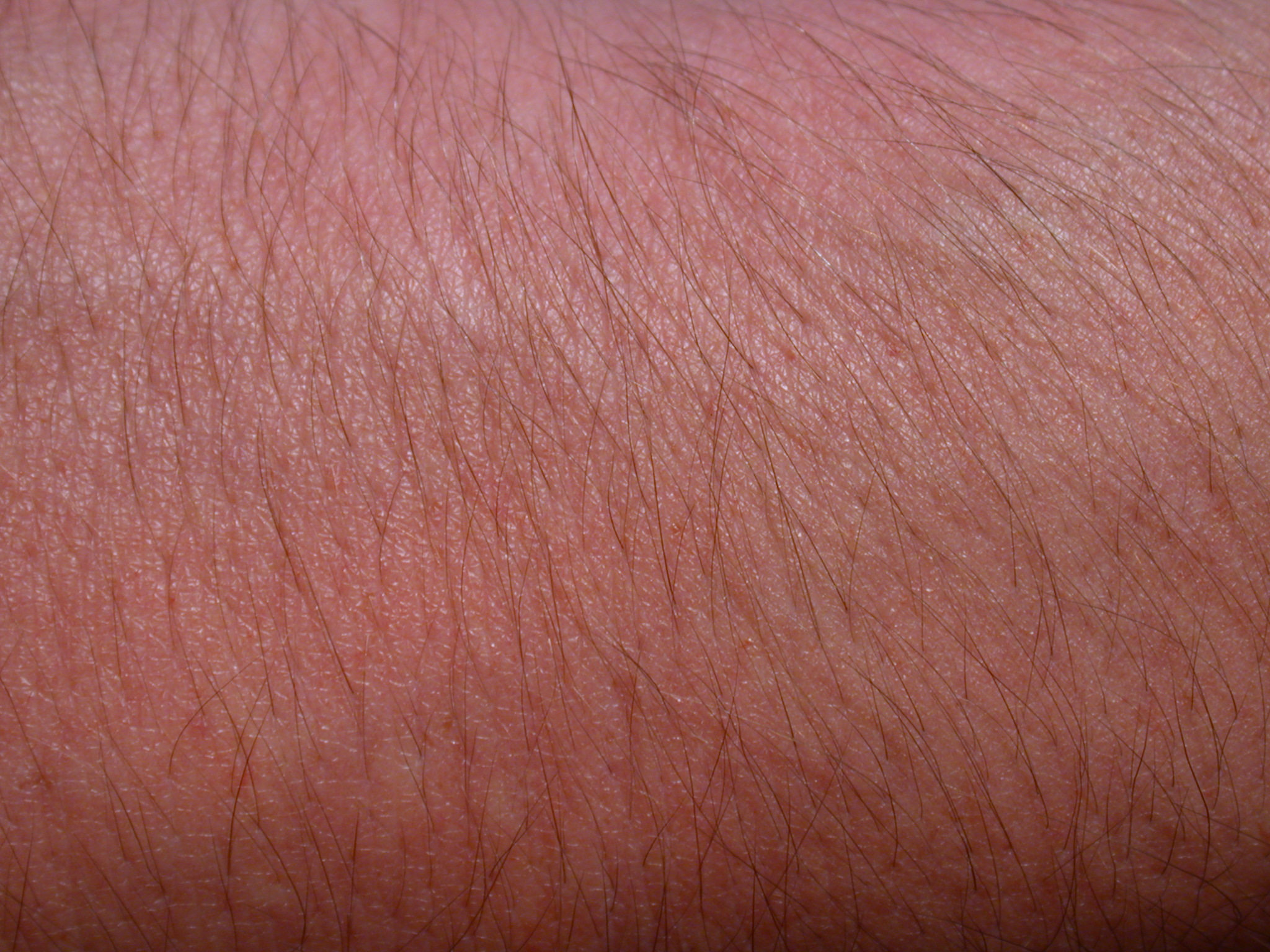 nature characters humanparts male texture reference bodykit1 arm skin macro hair hairy