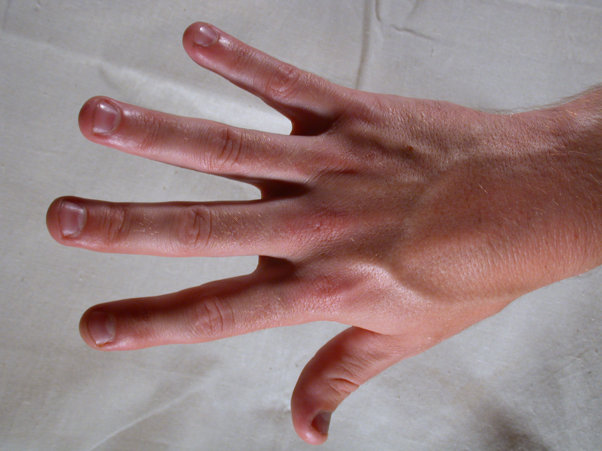 nature characters humanparts male texture reference bodykit1 lefthand top hand finger fingers nail nails fingernail fingernails skin hair hairy pink