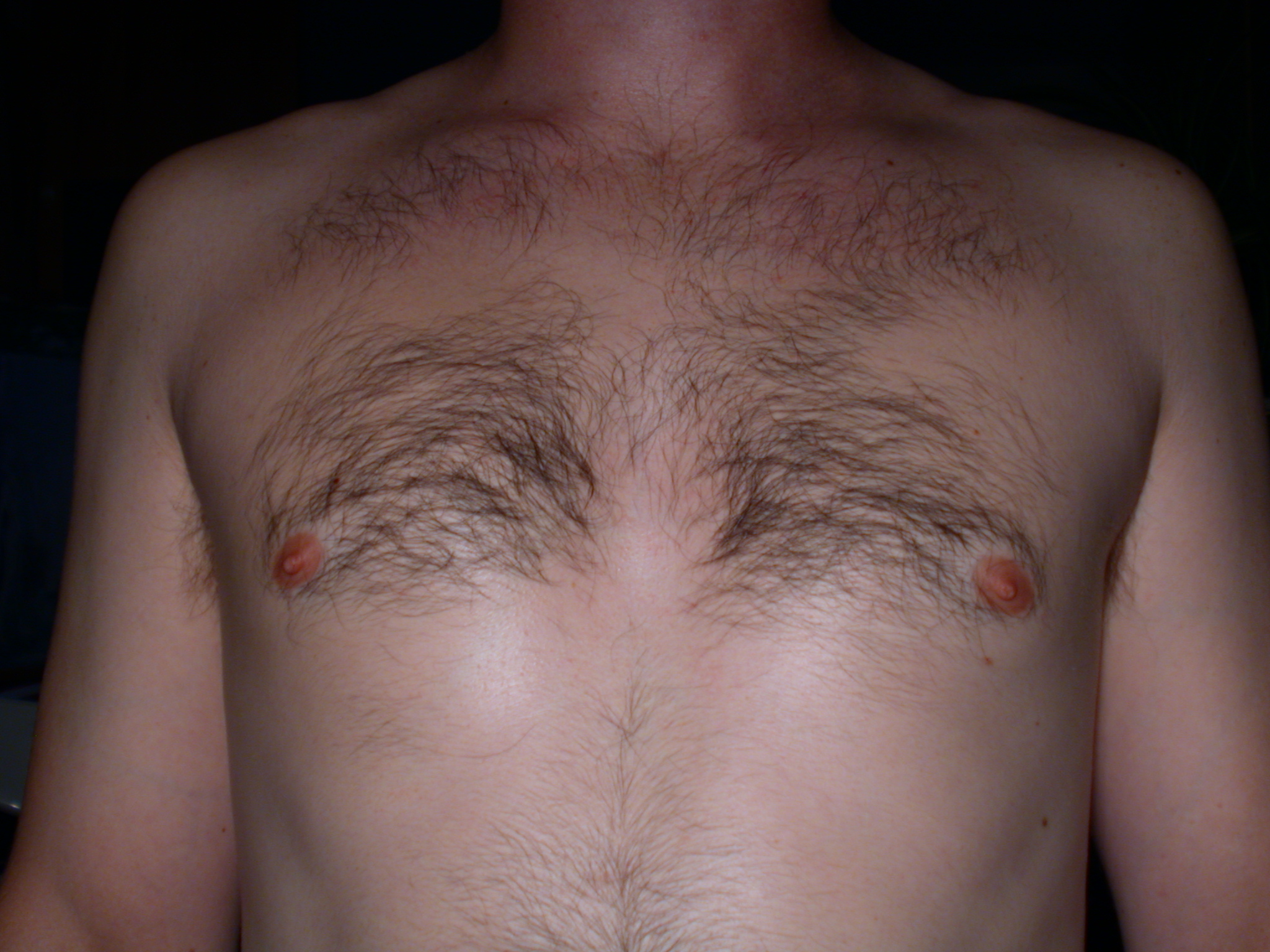 nature characters humanparts bk1 bodykit male texture chest chesthair nipple nipples front hair hairy man