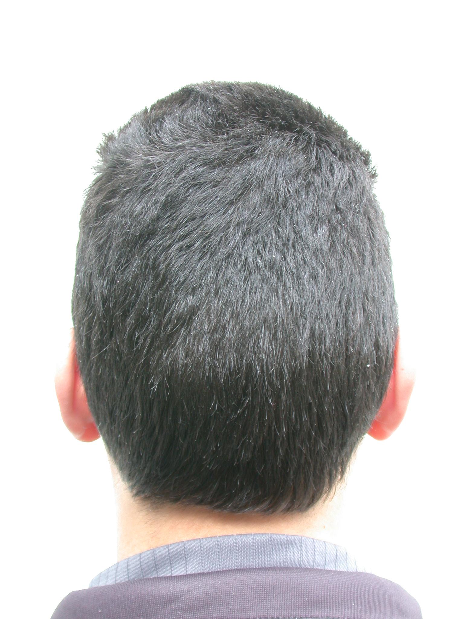 nature characters humanparts hair haircut texture back male black dario