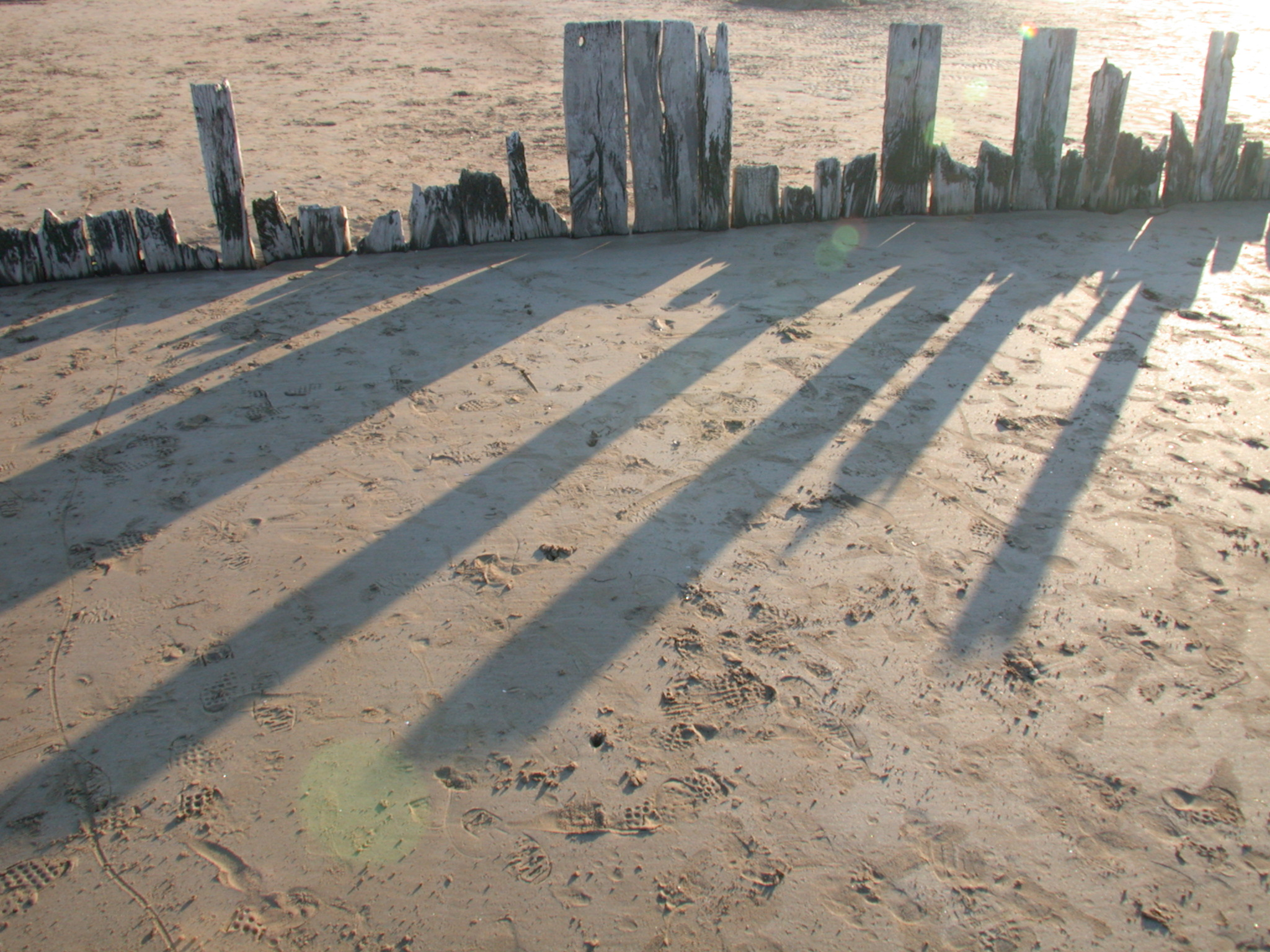 nature landscapes wood beachscapes shadow shadows skyline planks texture