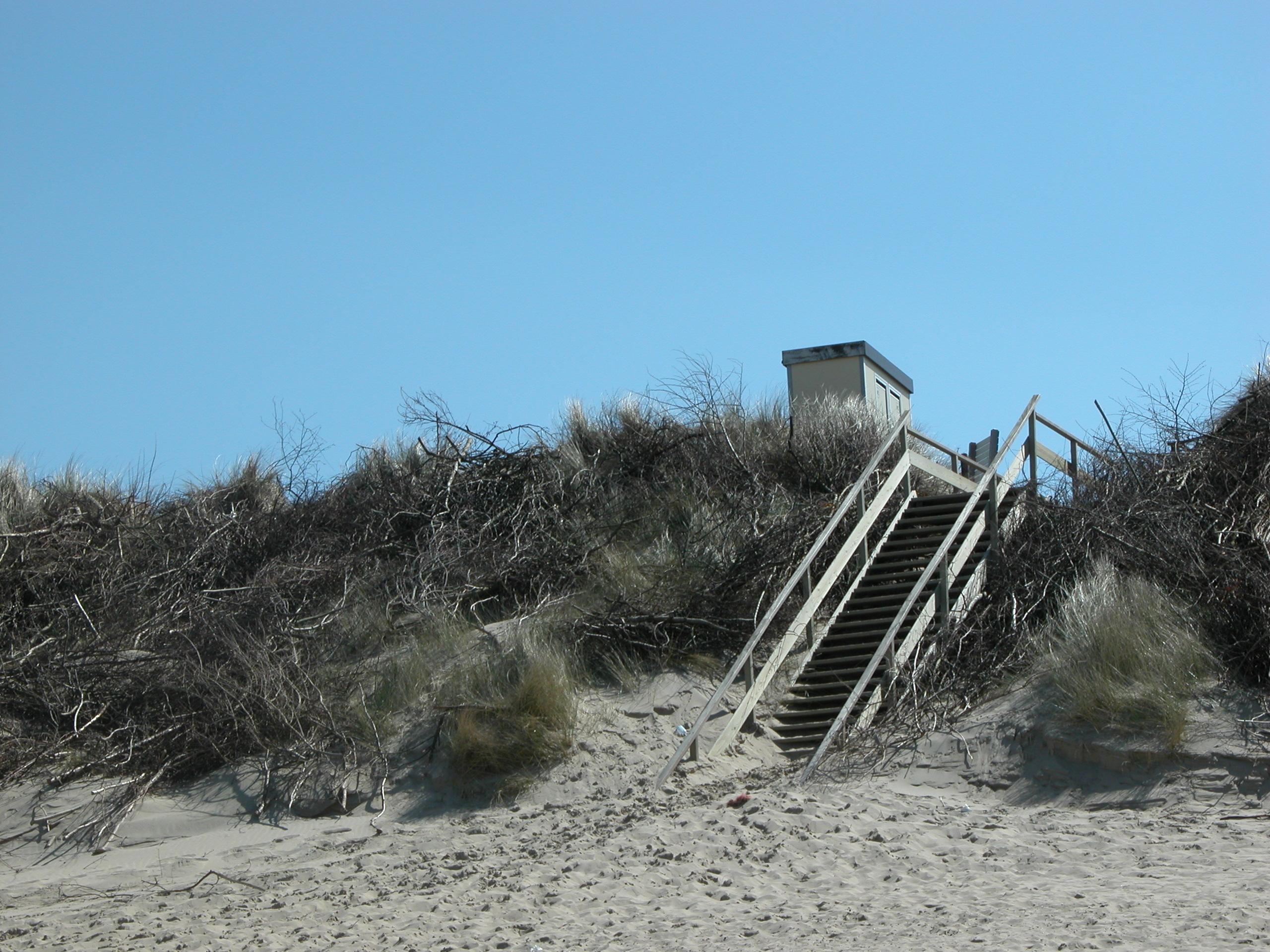 dune dunes stairs stairway beach walkway path helmgrass