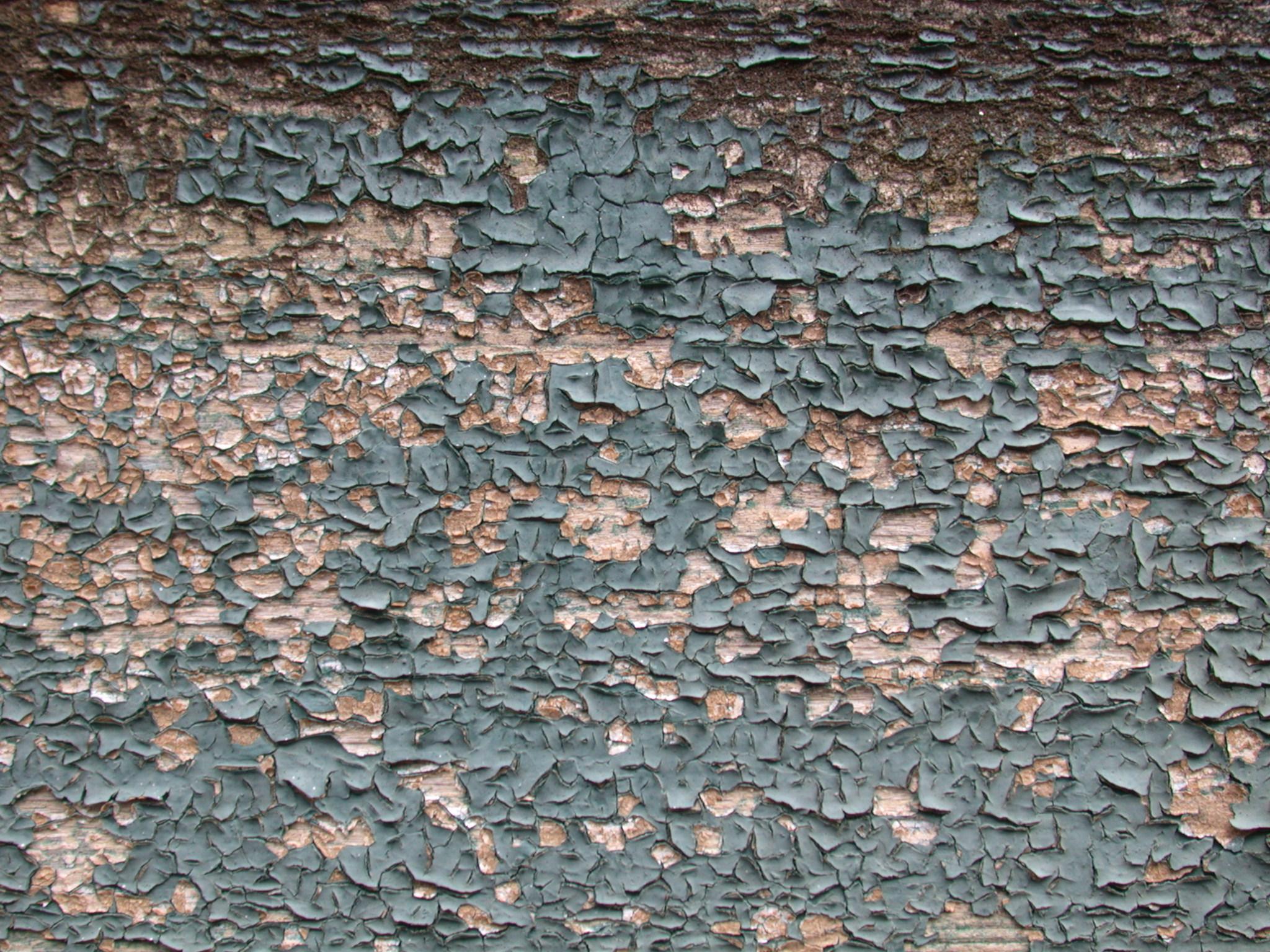 wood woods painted pain peeling peeled green weathered