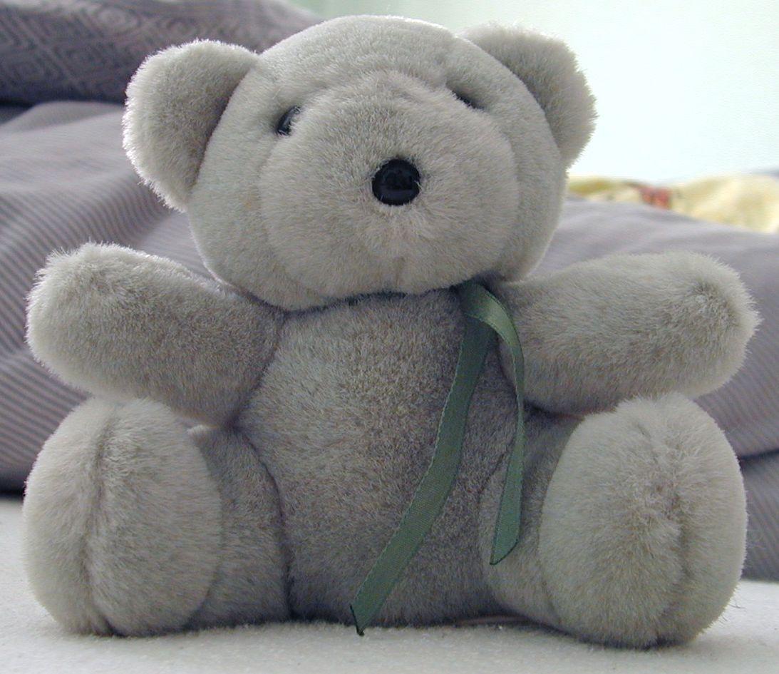 teddybear teddy bear cute toy plush bow