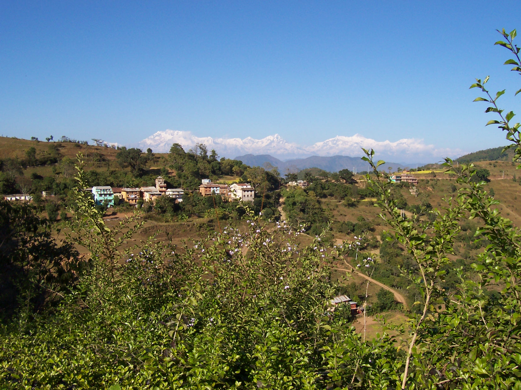 annet village in the hills green plants