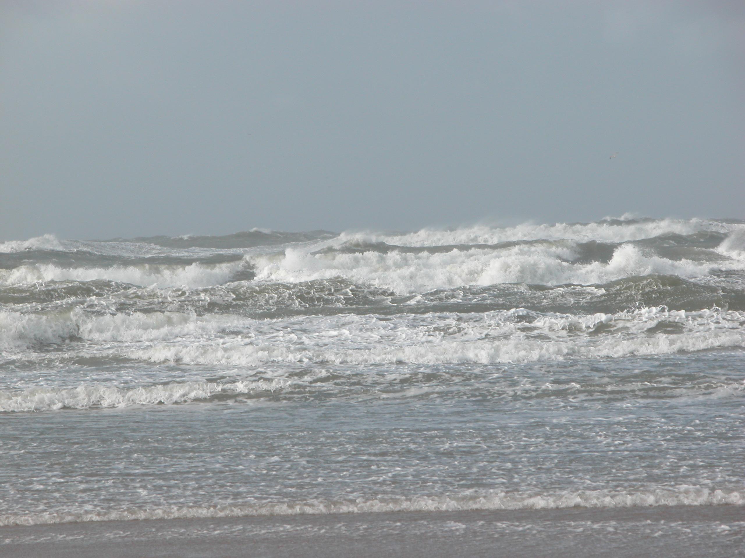 sea wave waves crashing cold windy day grey gray