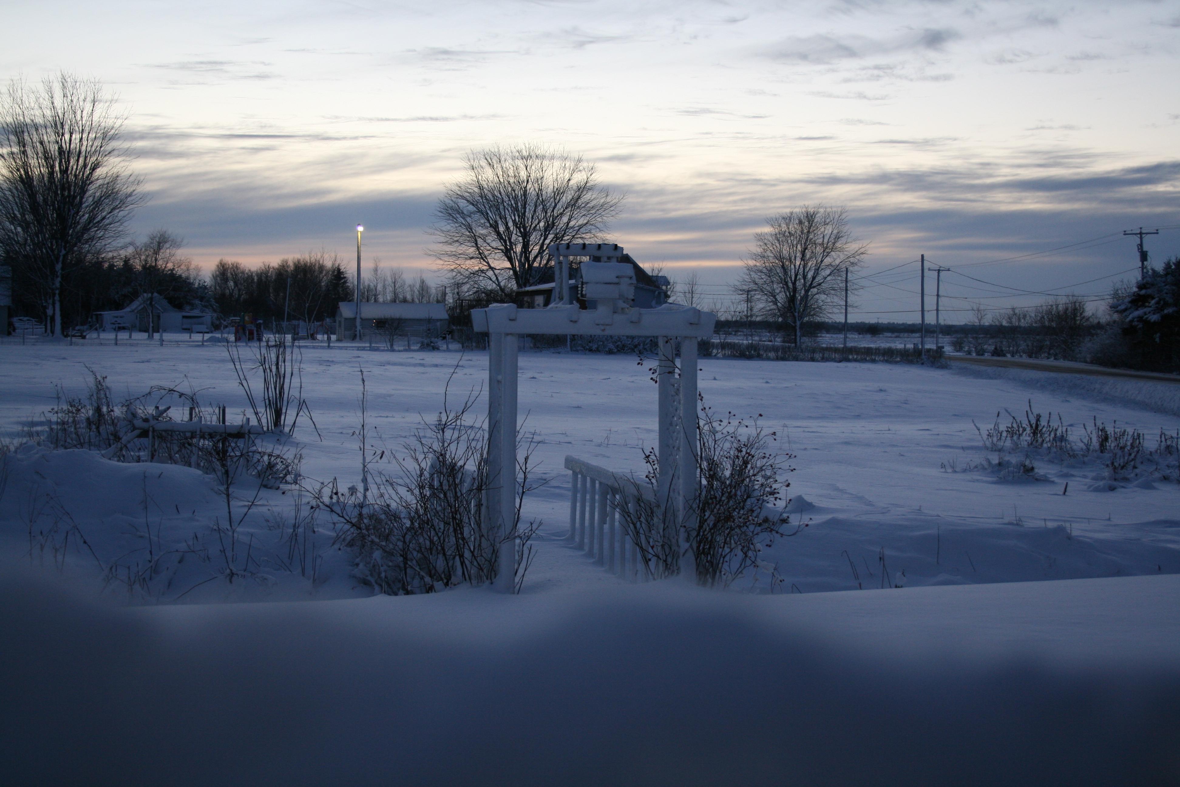 bozzit garden field snow covered winter cold white nature