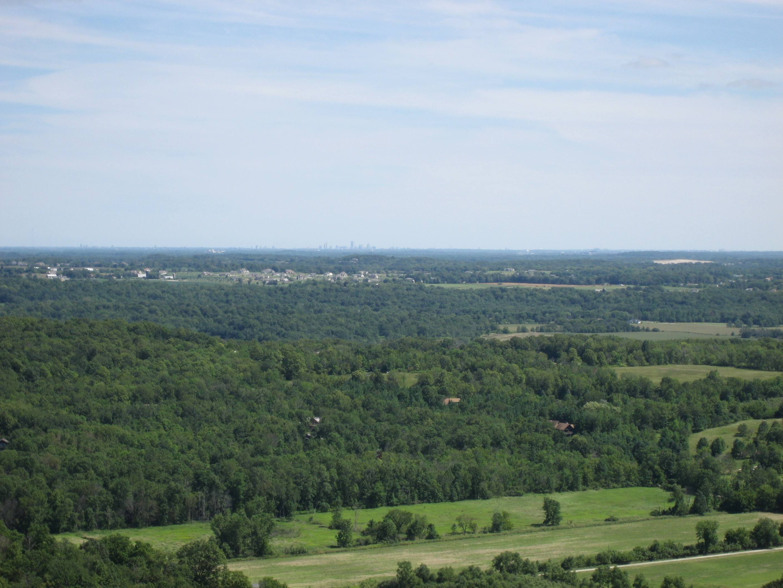 gallagher_lucas forest landscape aerial photo